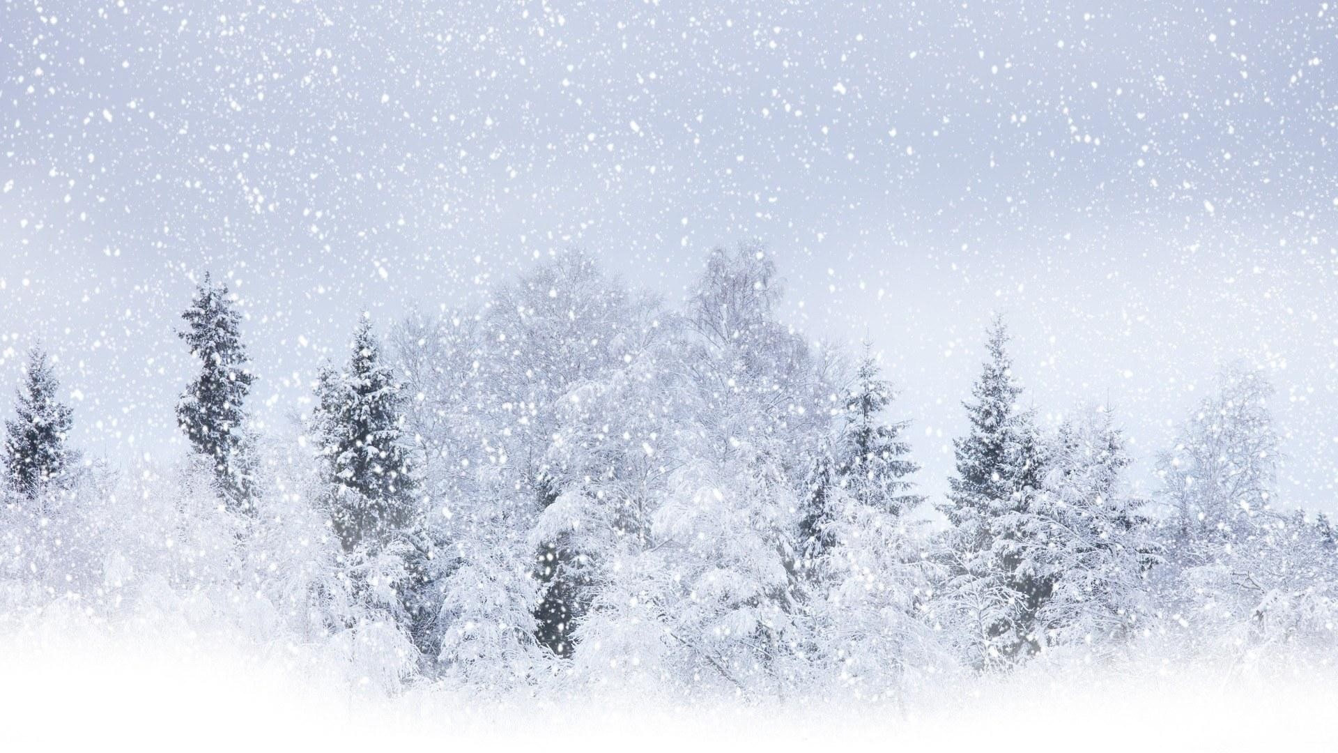 snow storm wallpaper ·①