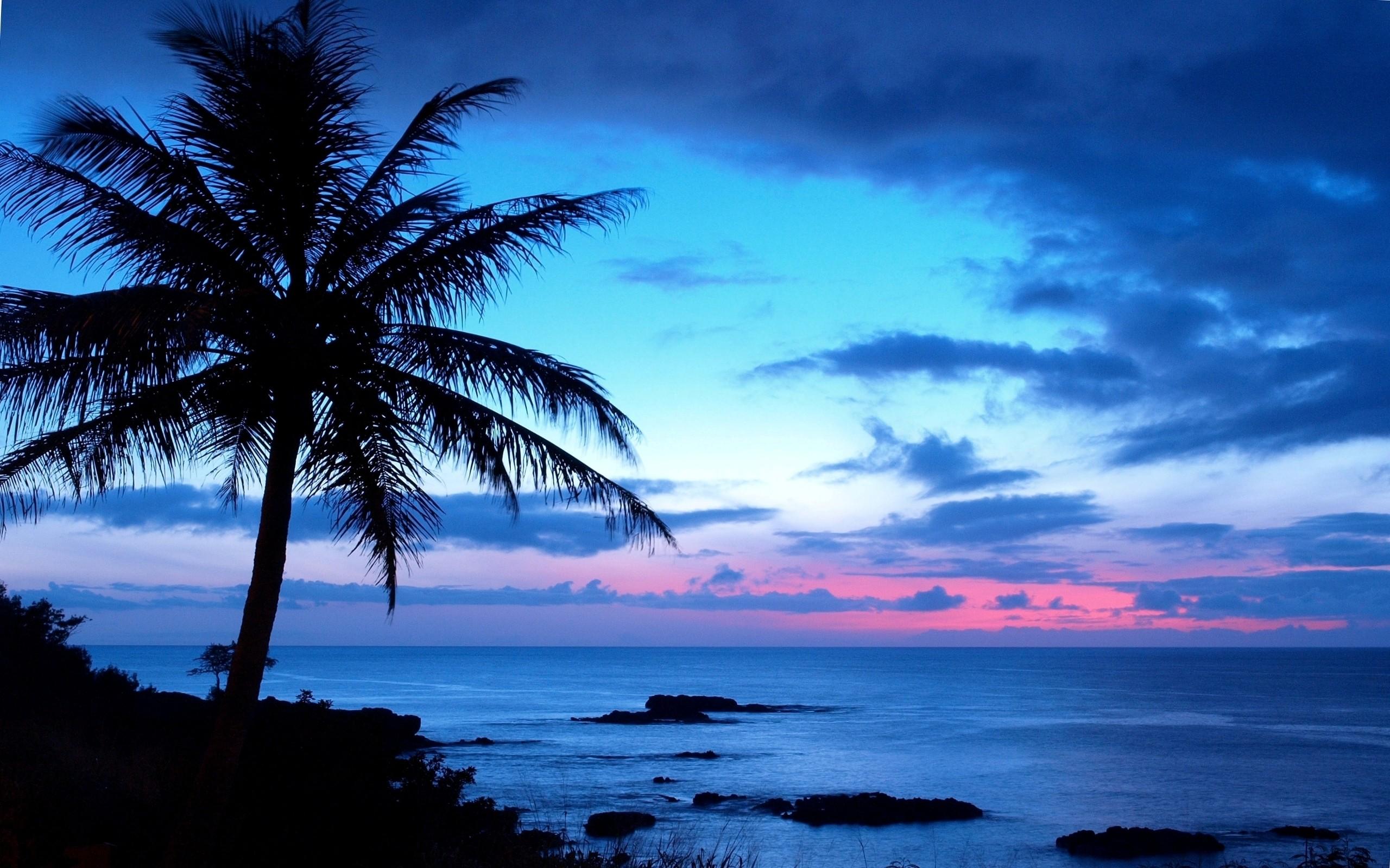 hawaii wallpaper download free wallpapers for desktop mobile