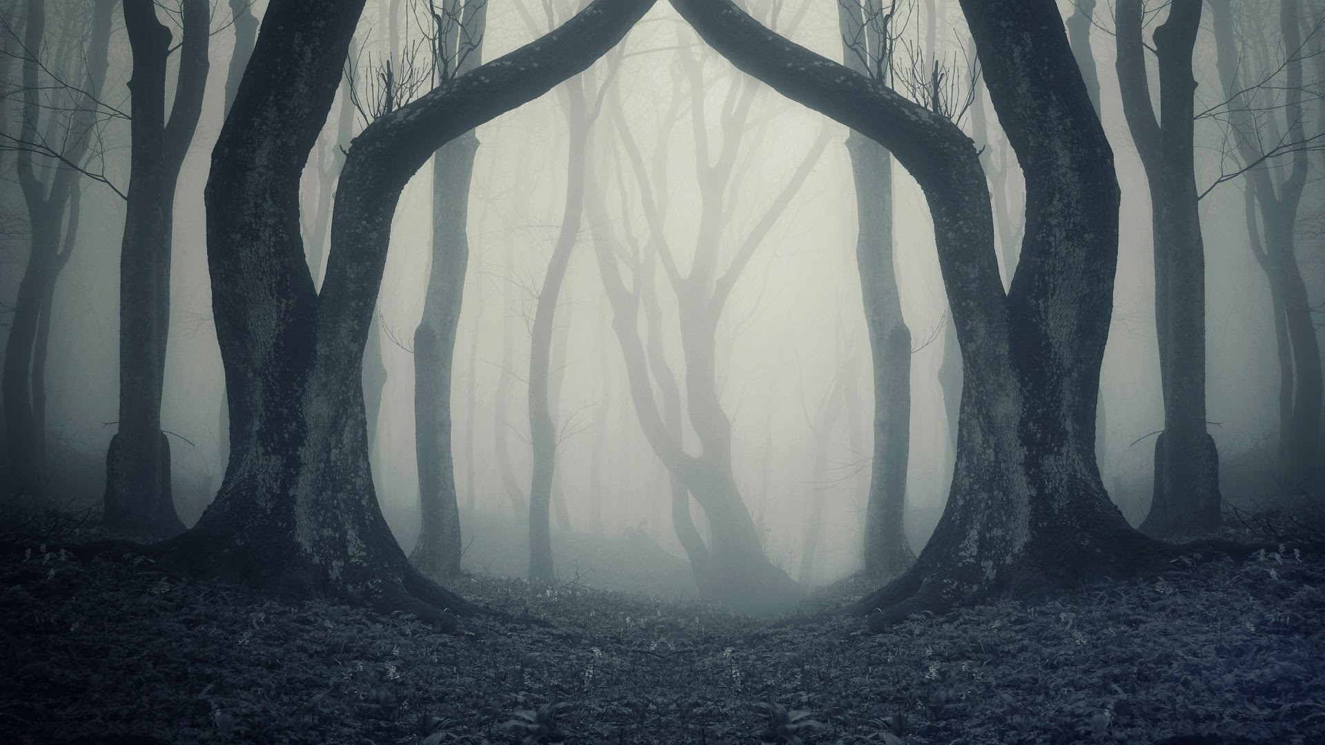 Creepy background pictures for Wallpaper for a