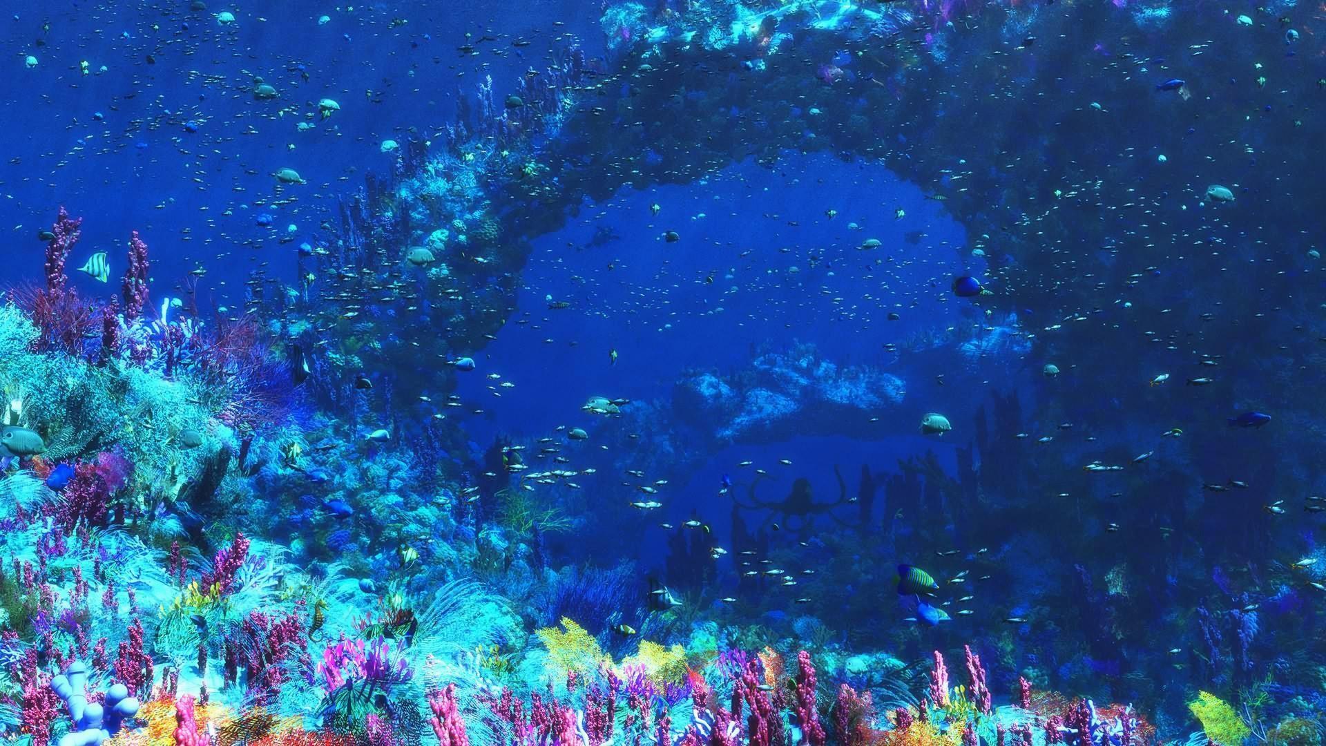 Under Water Wallpaper 1