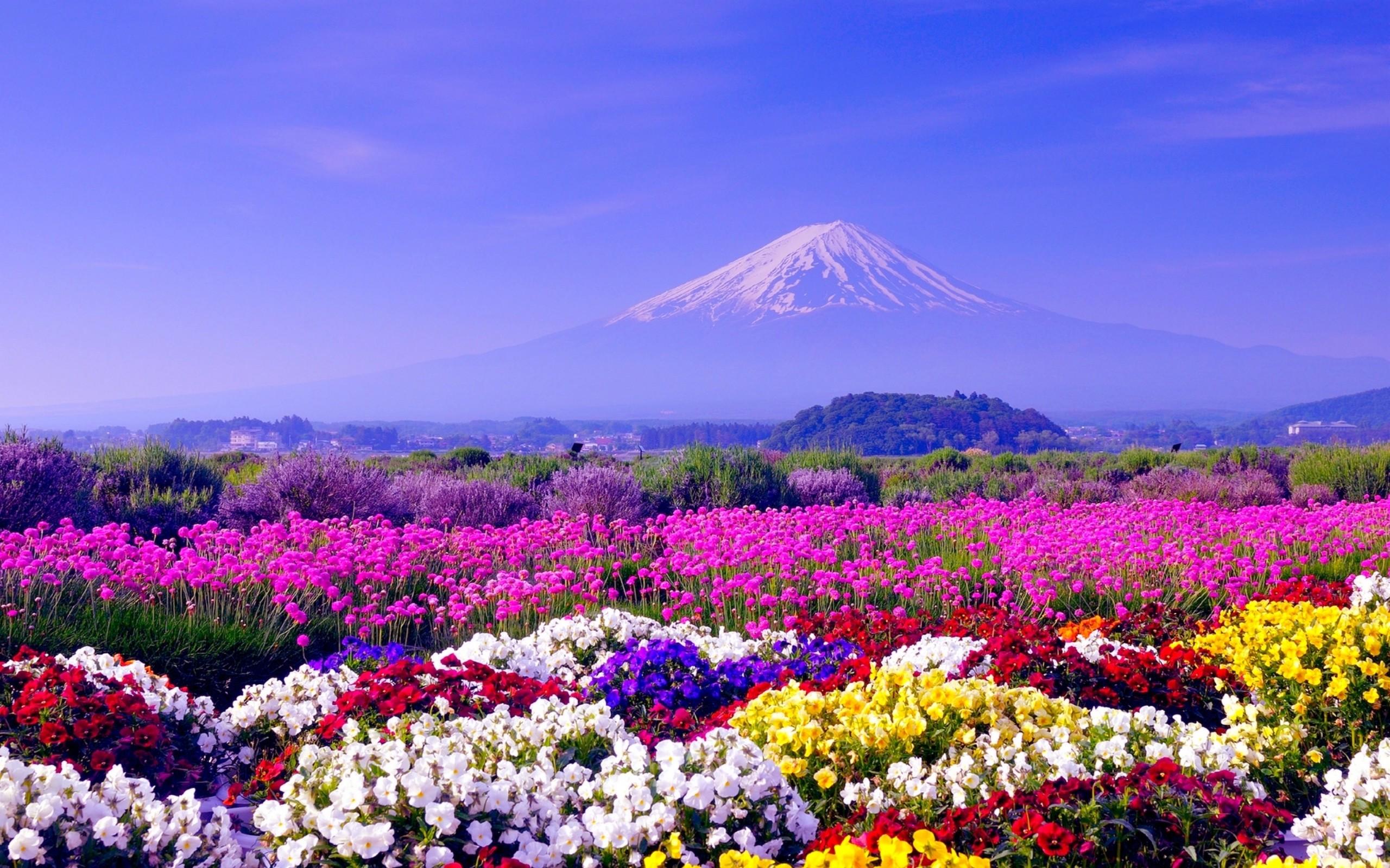 Spring Background Images ·① WallpaperTag