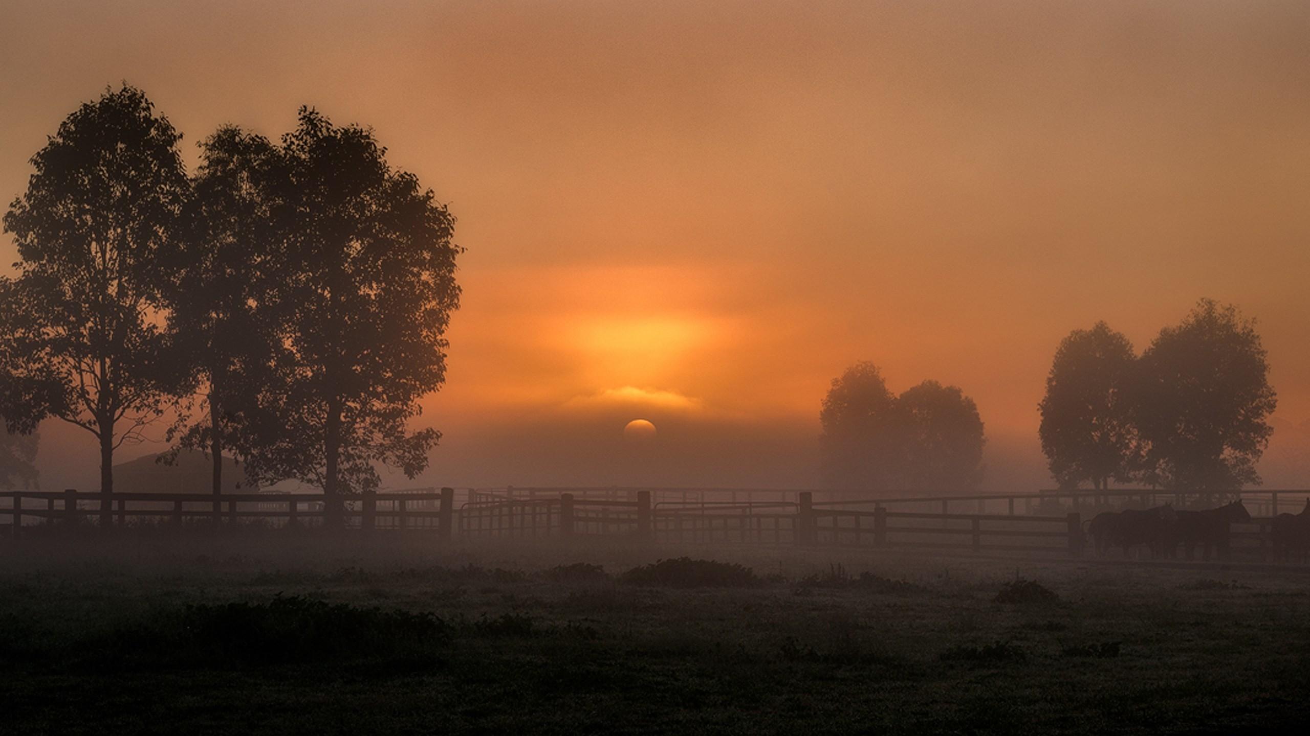 sunrise background images 183�� wallpapertag