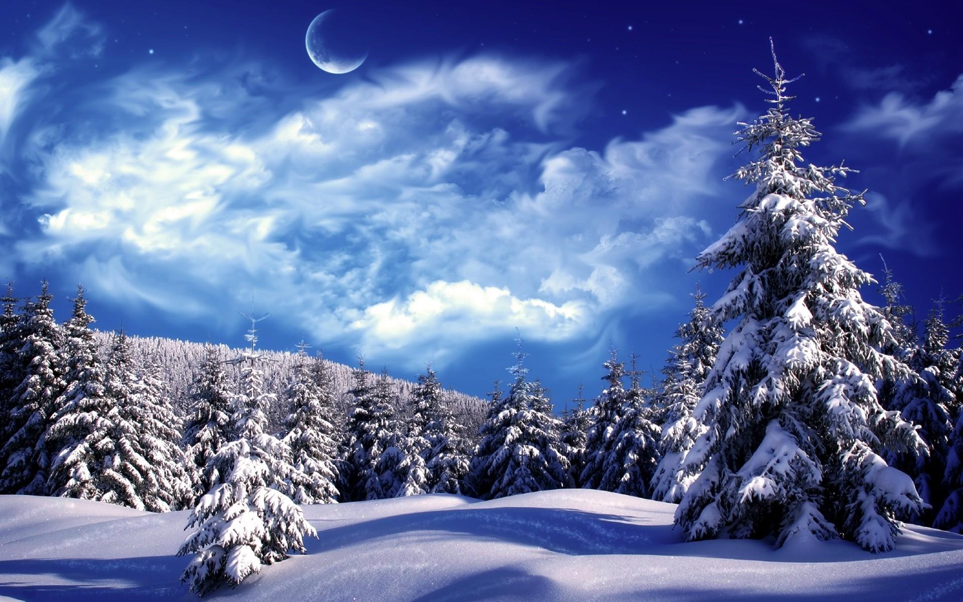 Winter Background Scenes Wallpapertag