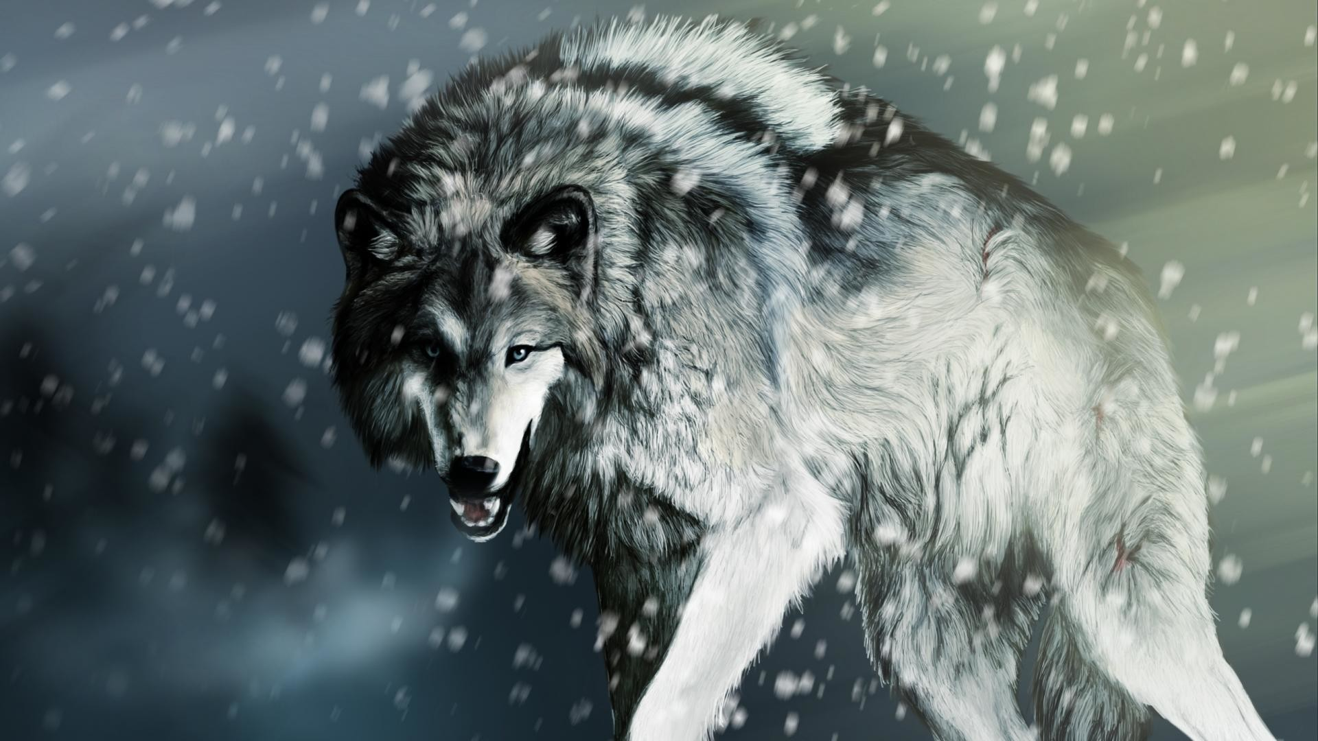 Baby wolf wallpaper 1920x1080 wolves wallpaper free hd wallpapers pinterest wolf wallpaper and wallpaper voltagebd Gallery