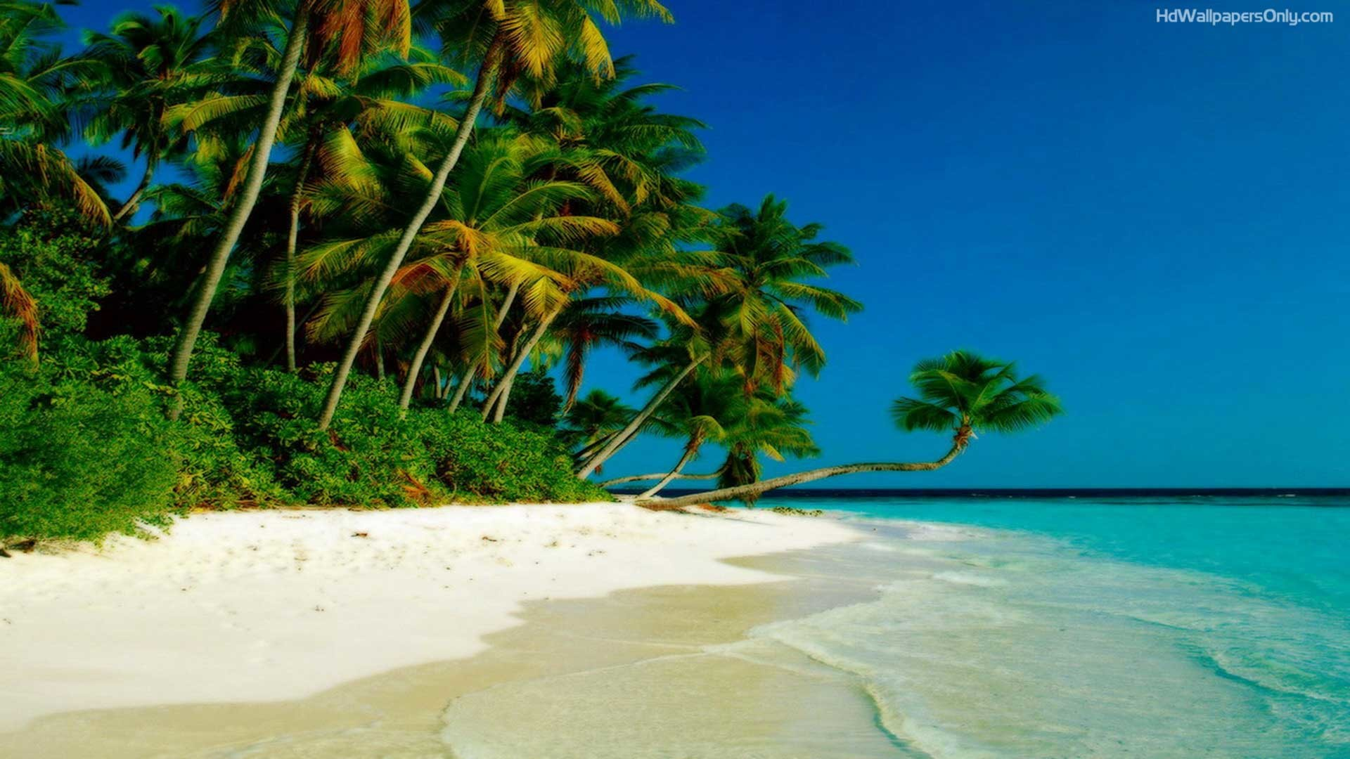 1920x1080 Collection of Beach Backgrounds, Beach HD Wallpapers Beach HD Wallpapers Wallpapers)