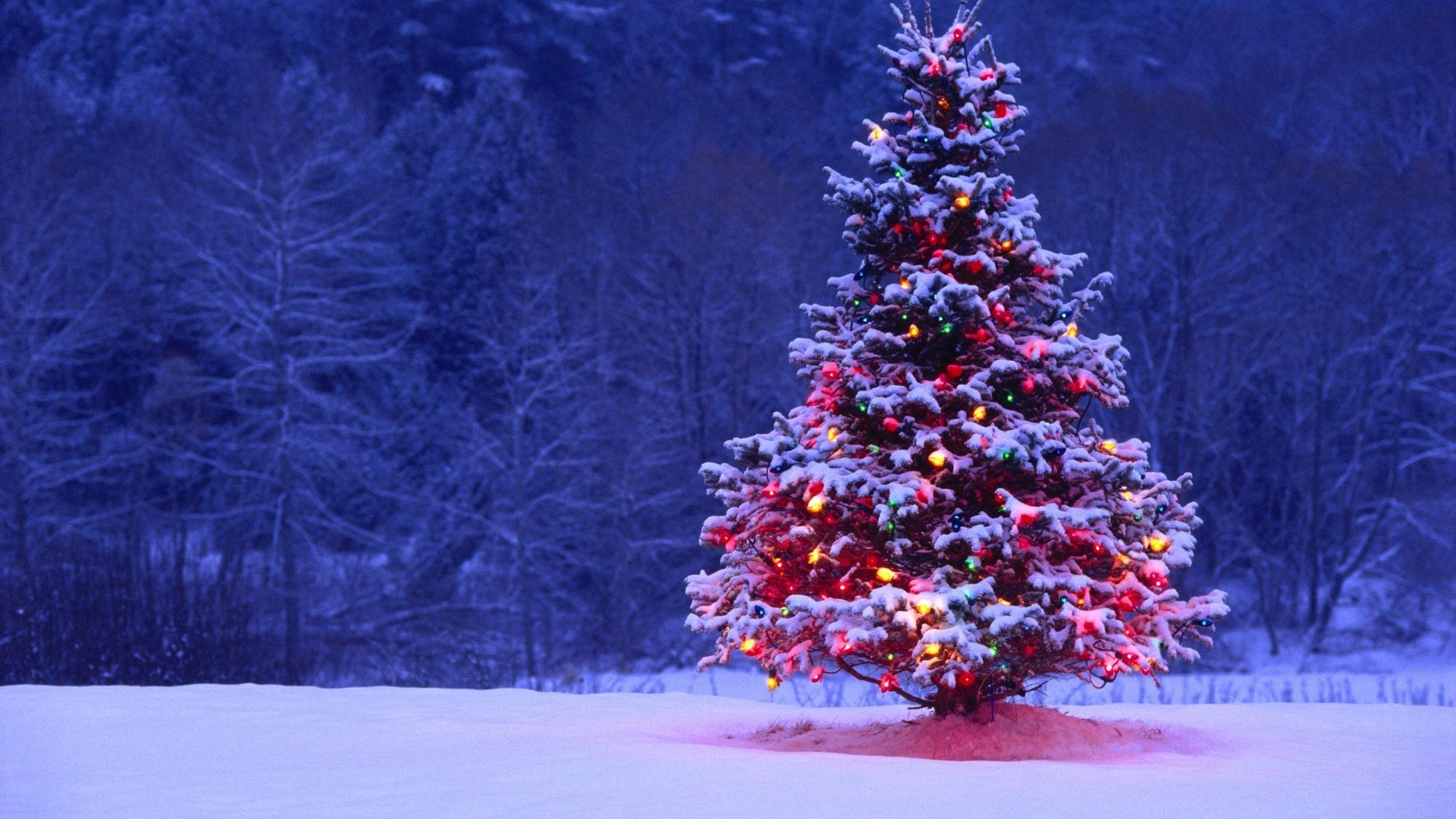 Christmas Hd Wallpaper Download Free Wallpapers And Backgrounds