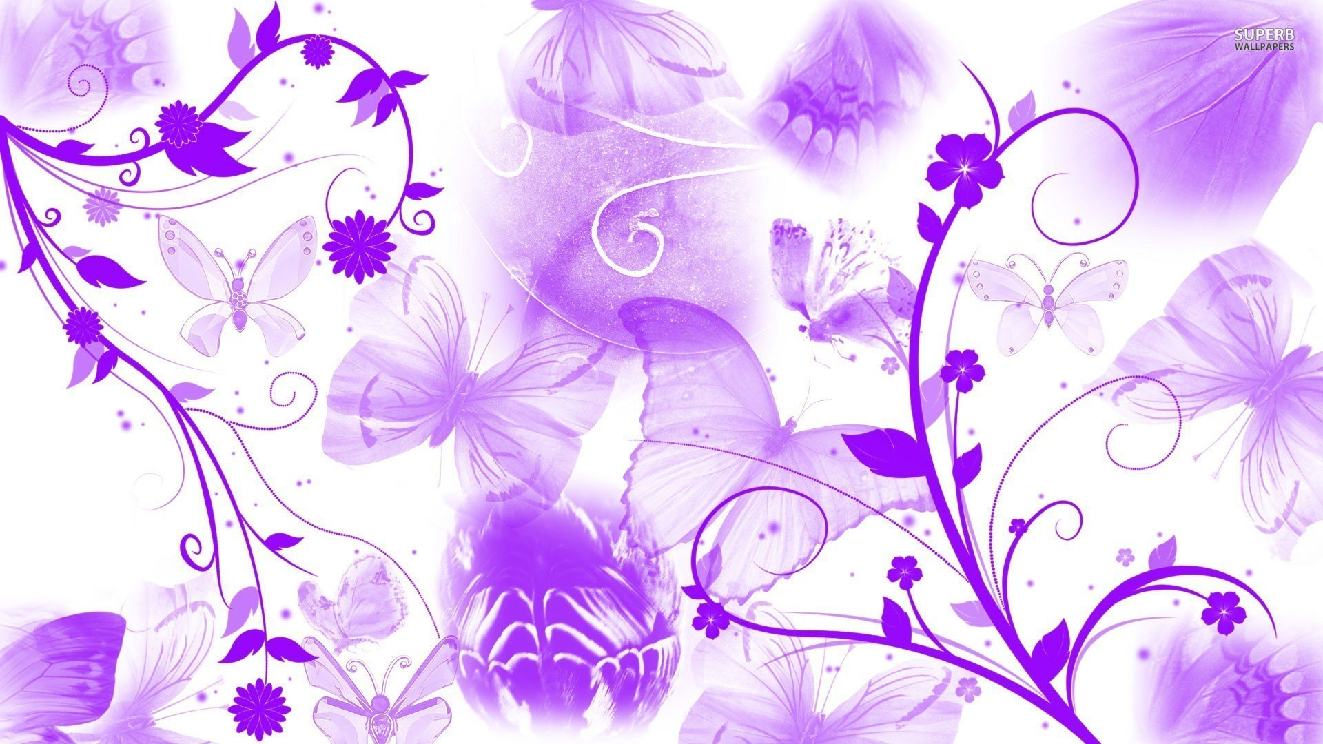 Good Wallpaper High Quality Butterfly - 630106-purple-butterfly-wallpaper-1920x1080-large-resolution  Best Photo Reference_53677.jpg