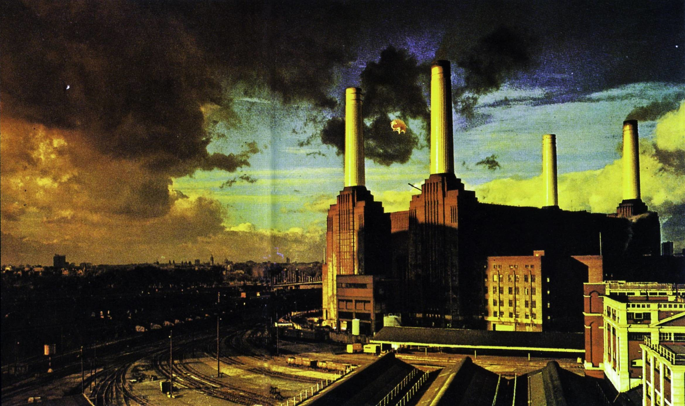 pink floyd the wall movie download hd