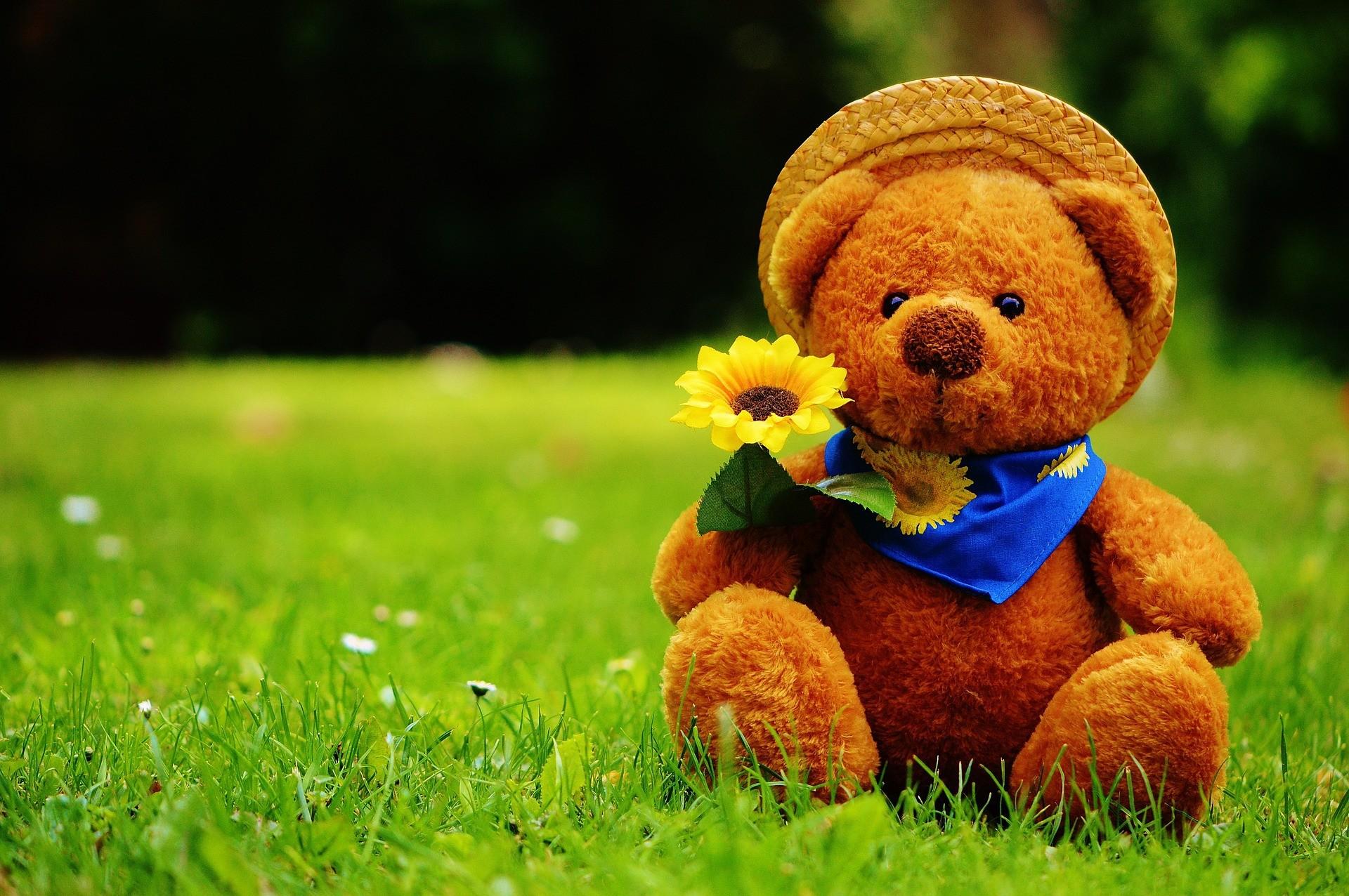 Teddy Bear Wallpapers ①