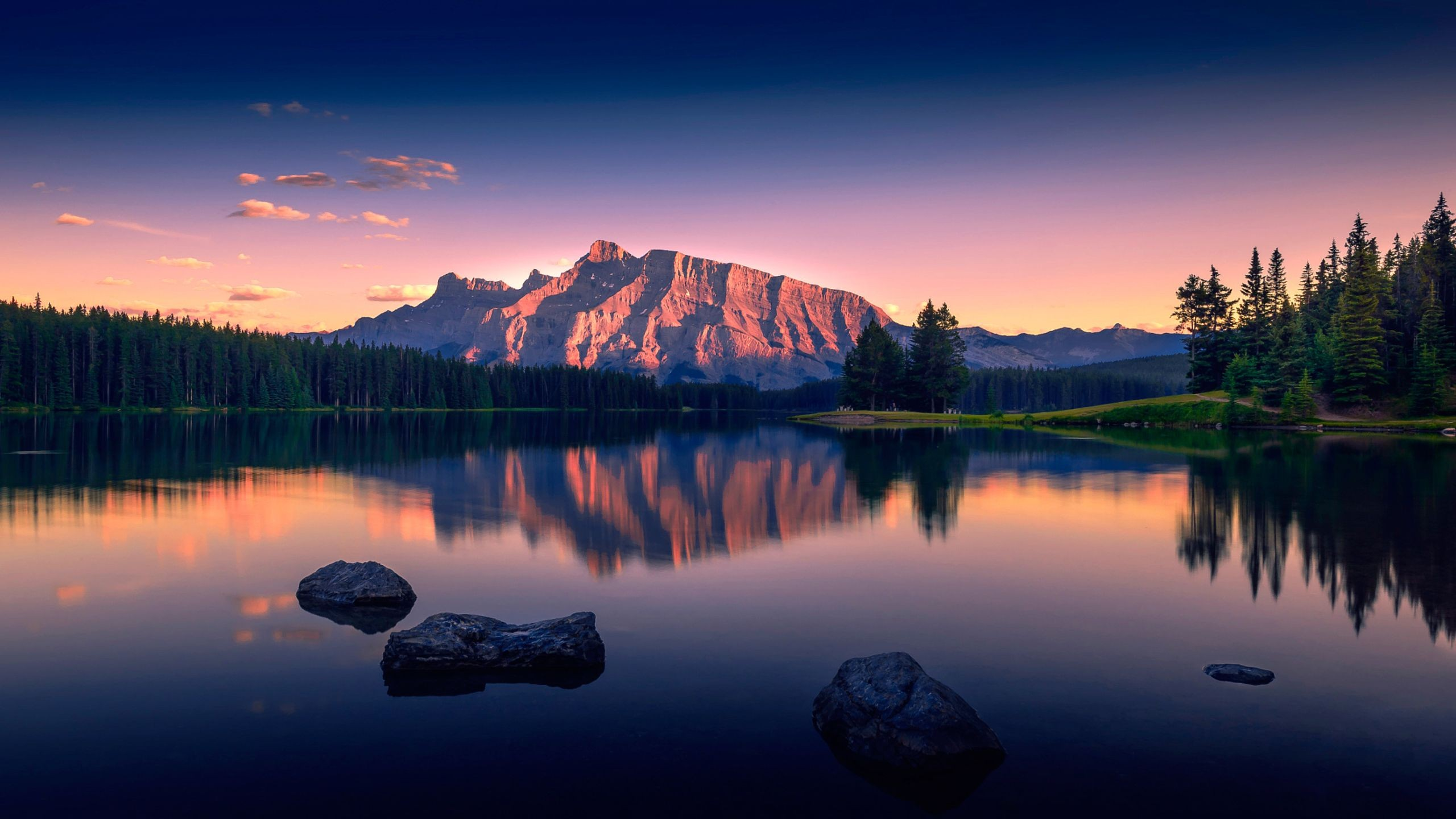 48 2560x1440 wallpapers 183�� download free amazing full hd