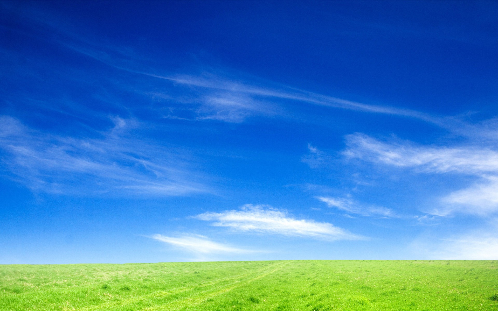 grass and sky backgrounds. Delighful And HD Wallpaper  On Grass And Sky Backgrounds