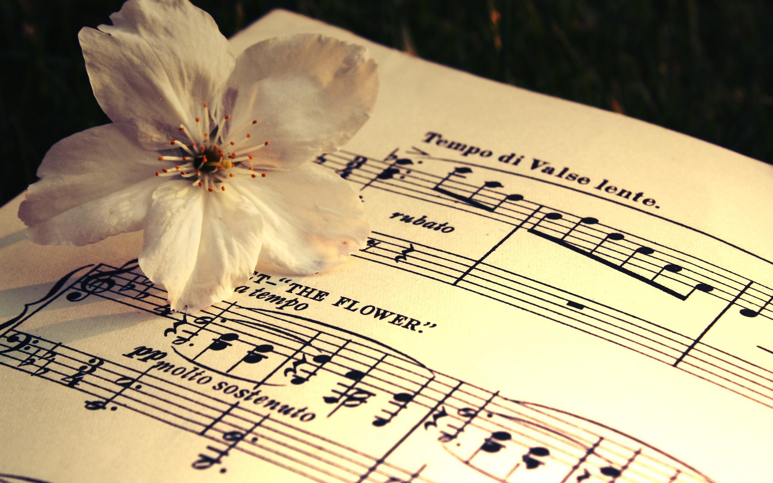 Sheet Music Background 183 ① Download Free Awesome Full Hd