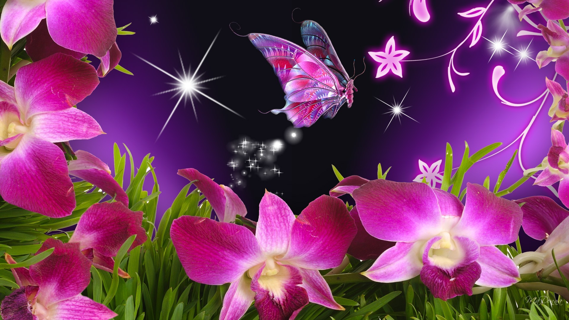 Purple Butterfly Background Wallpapertag