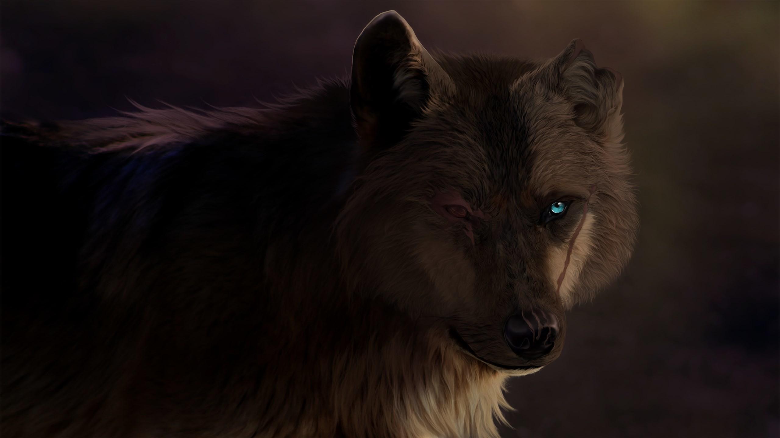 картинки волка одиночки на голубом фоне на рабочий стол