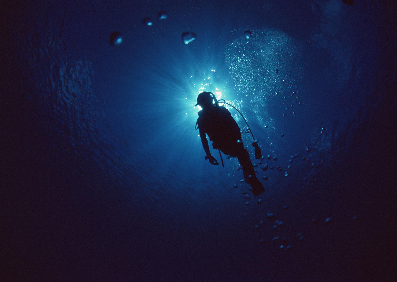 Scuba diving wallpaper wallpapertag - Porno dive video gratis ...