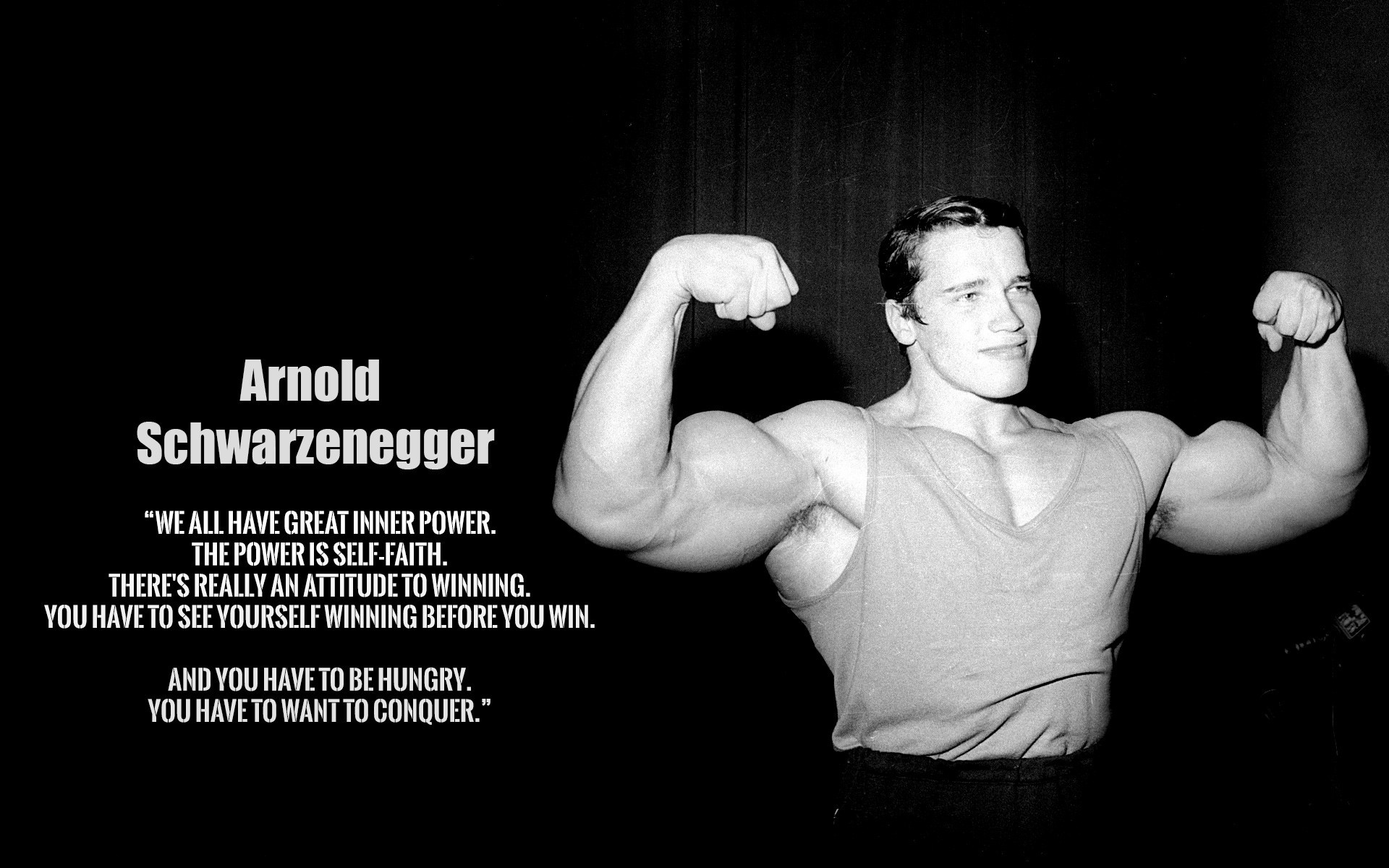 arnold schwarzenegger bodybuilding wallpapers posters and