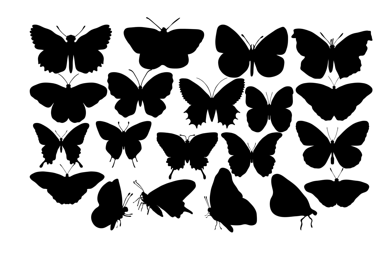 Картинки черные бабочки на прозрачном фоне