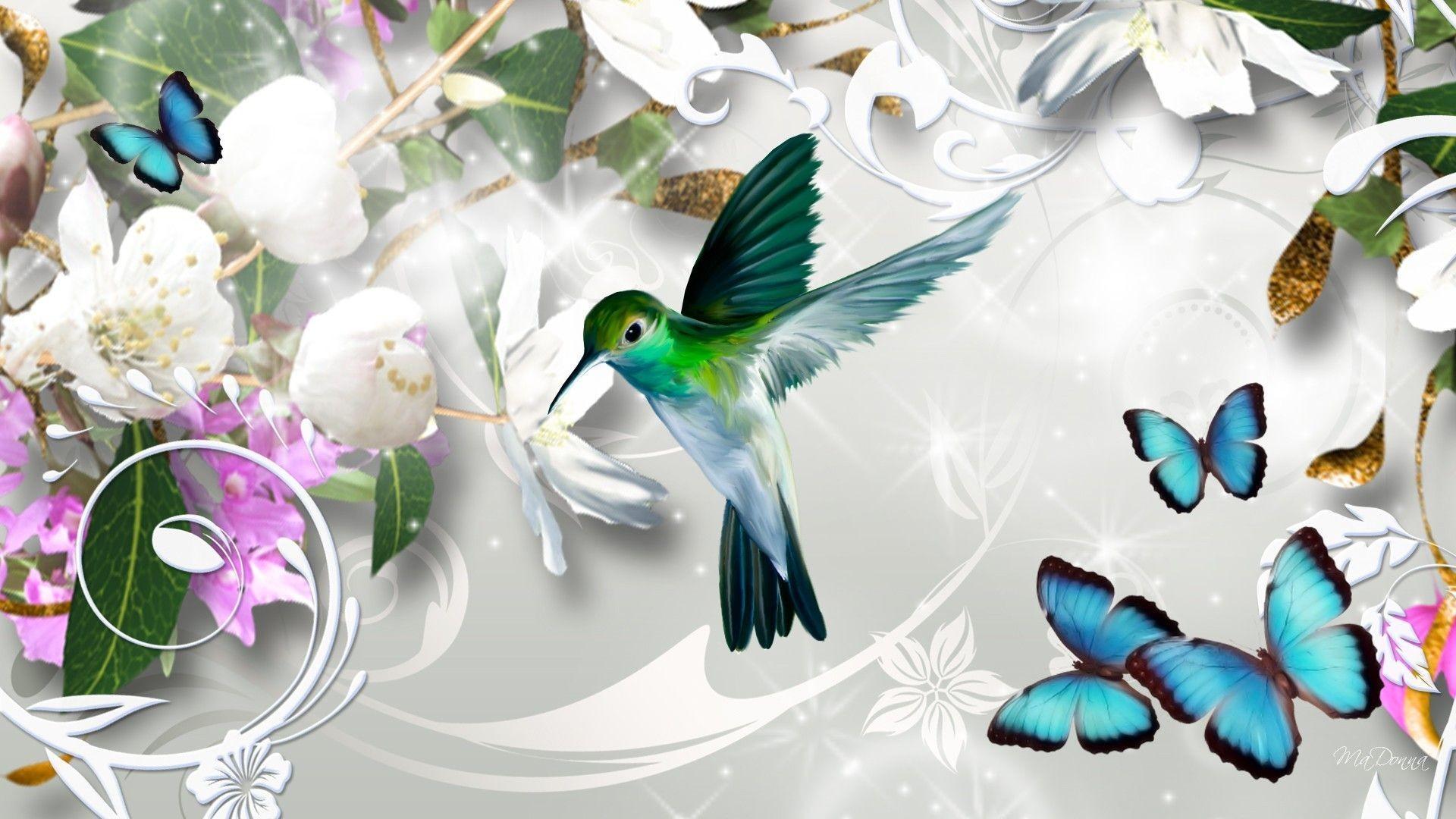 Открытки бабочки птицы