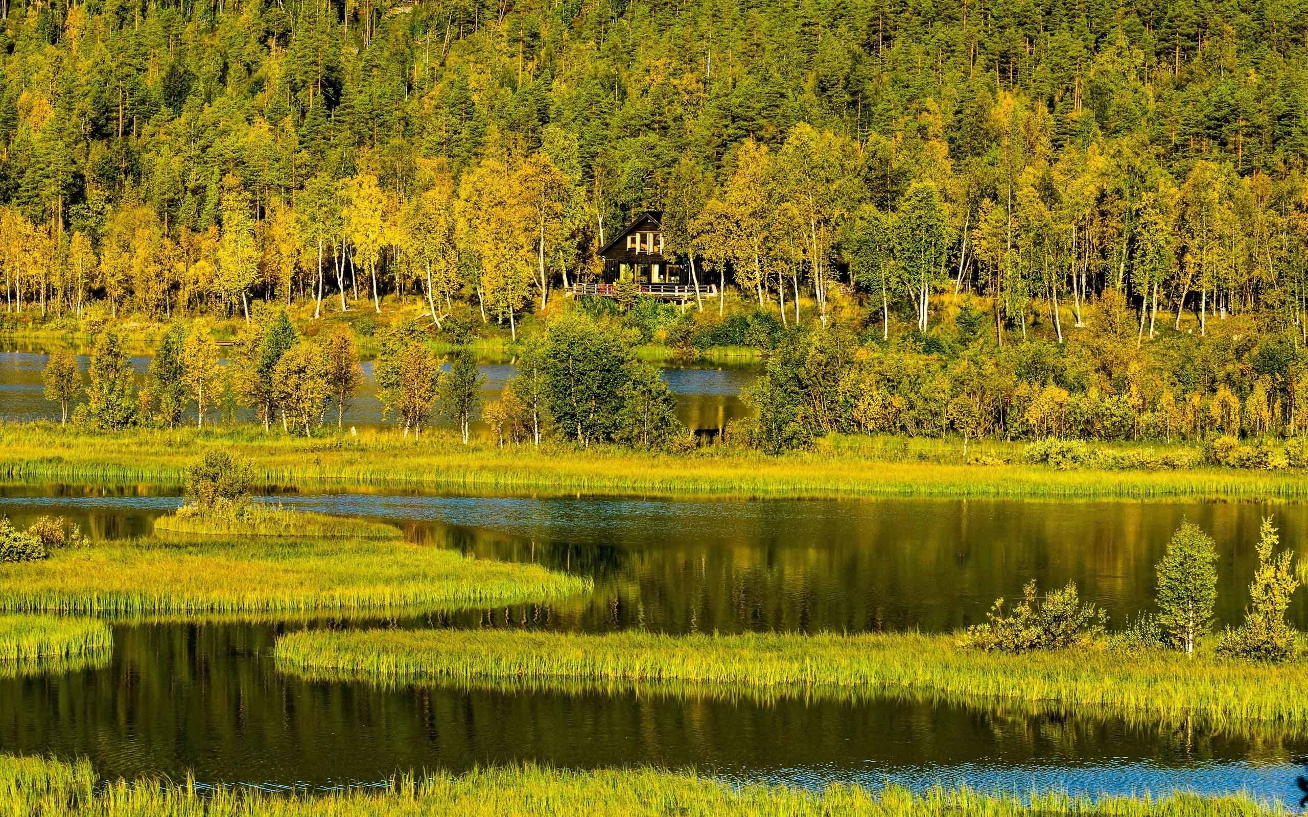 природа озеро дом лес деревья  № 2447925 бесплатно