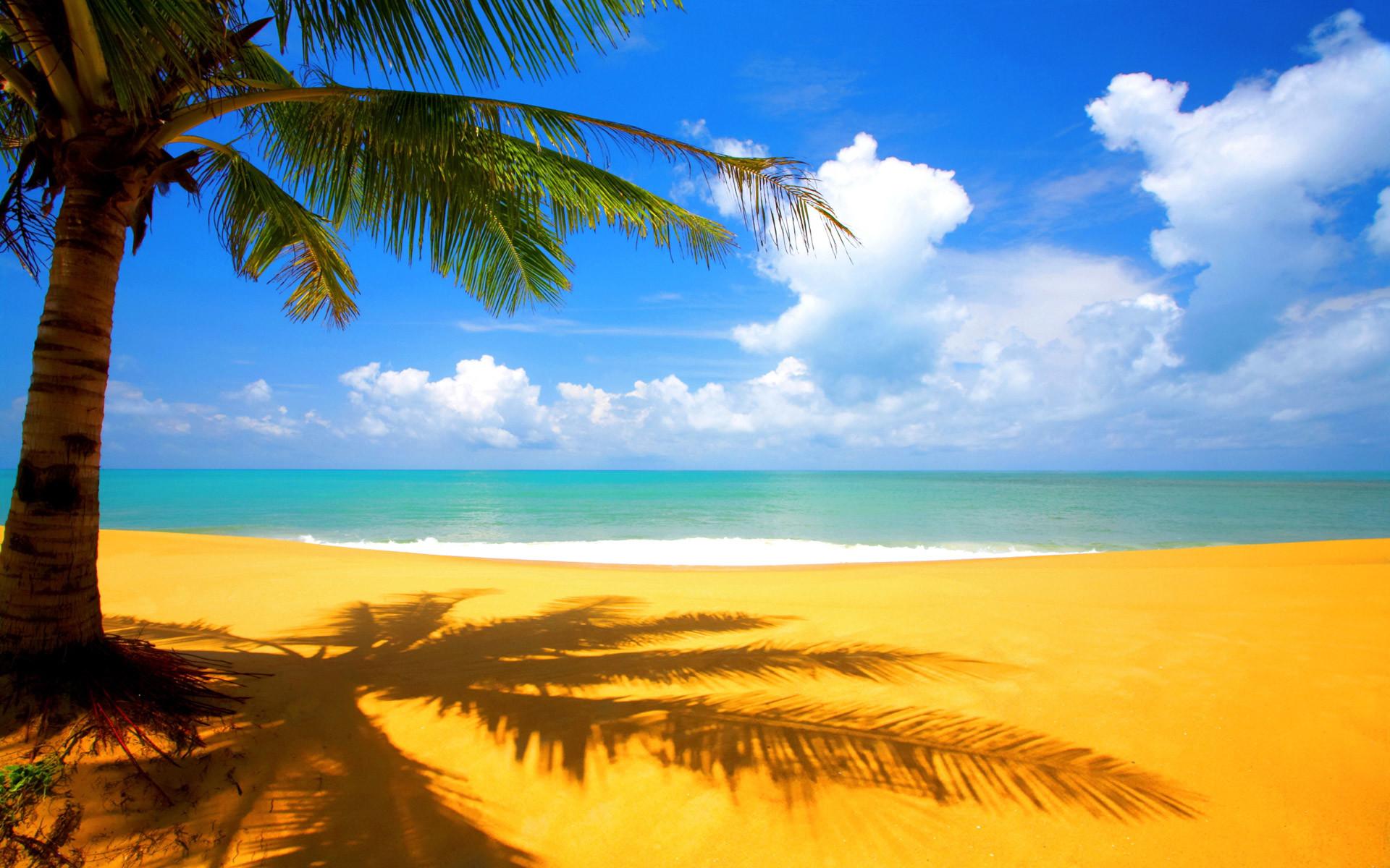beautiful scenery backgrounds ·①