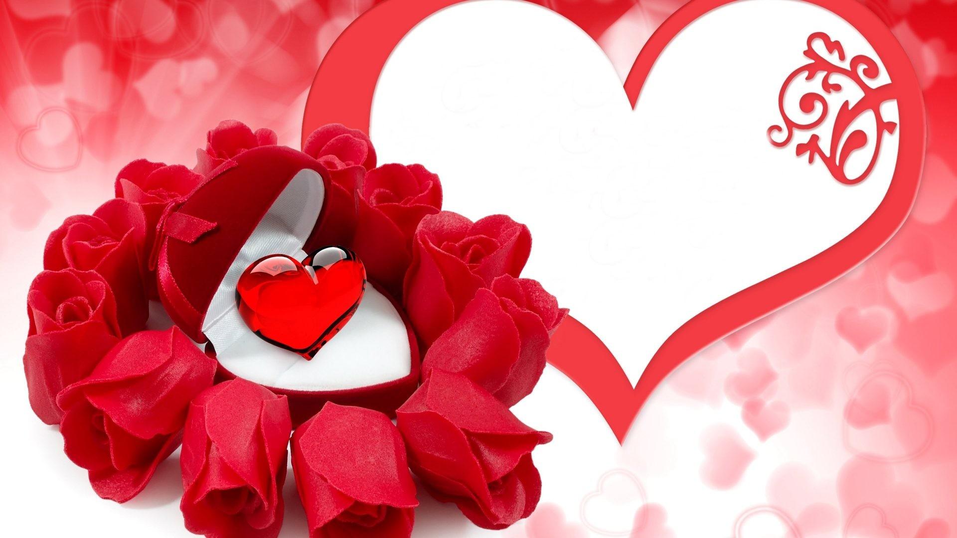 love flower wallpaper 183��