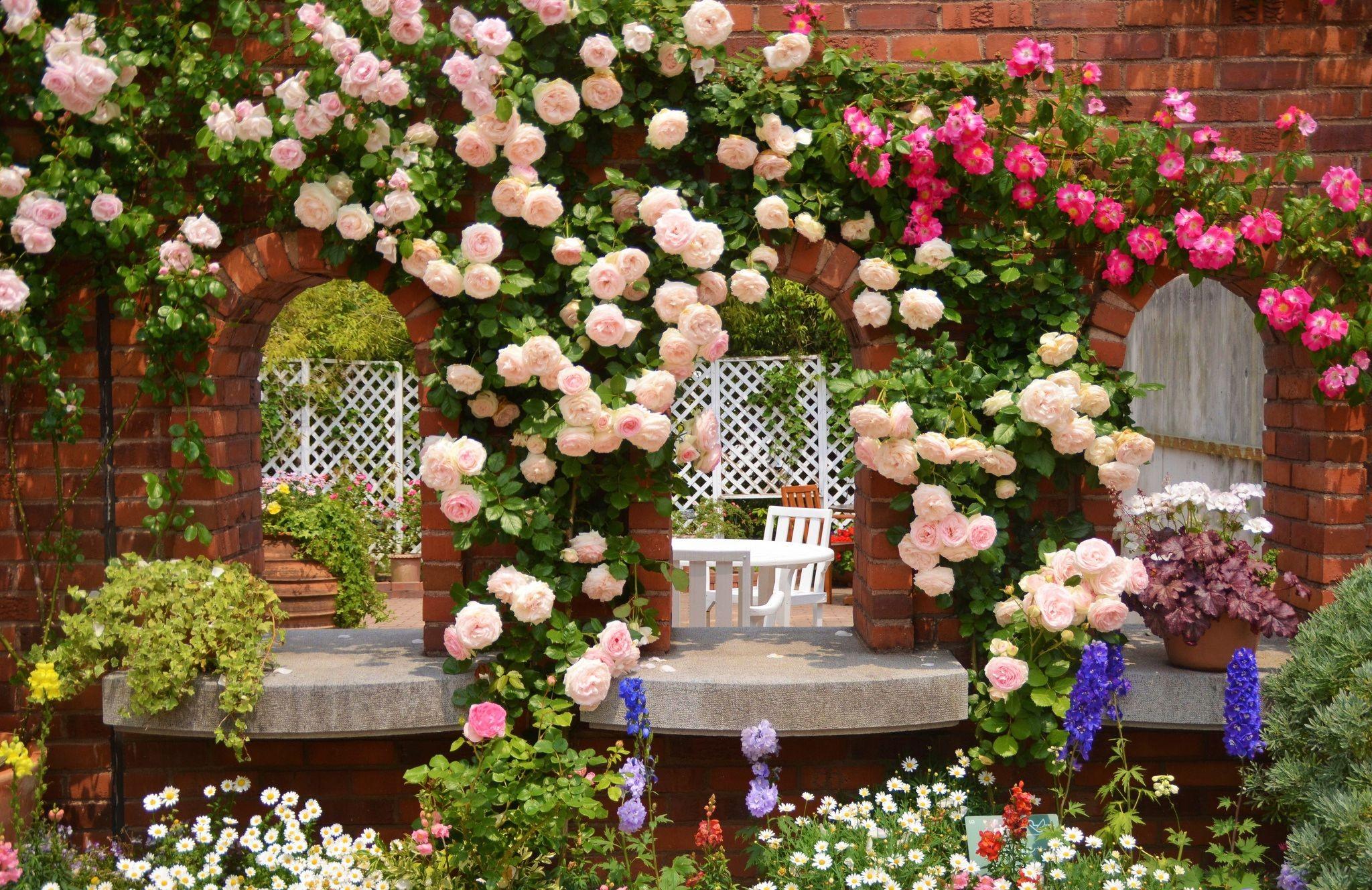 2048x1328 Rose Garden Desktop Background | 1750 | Hostelgarden.net