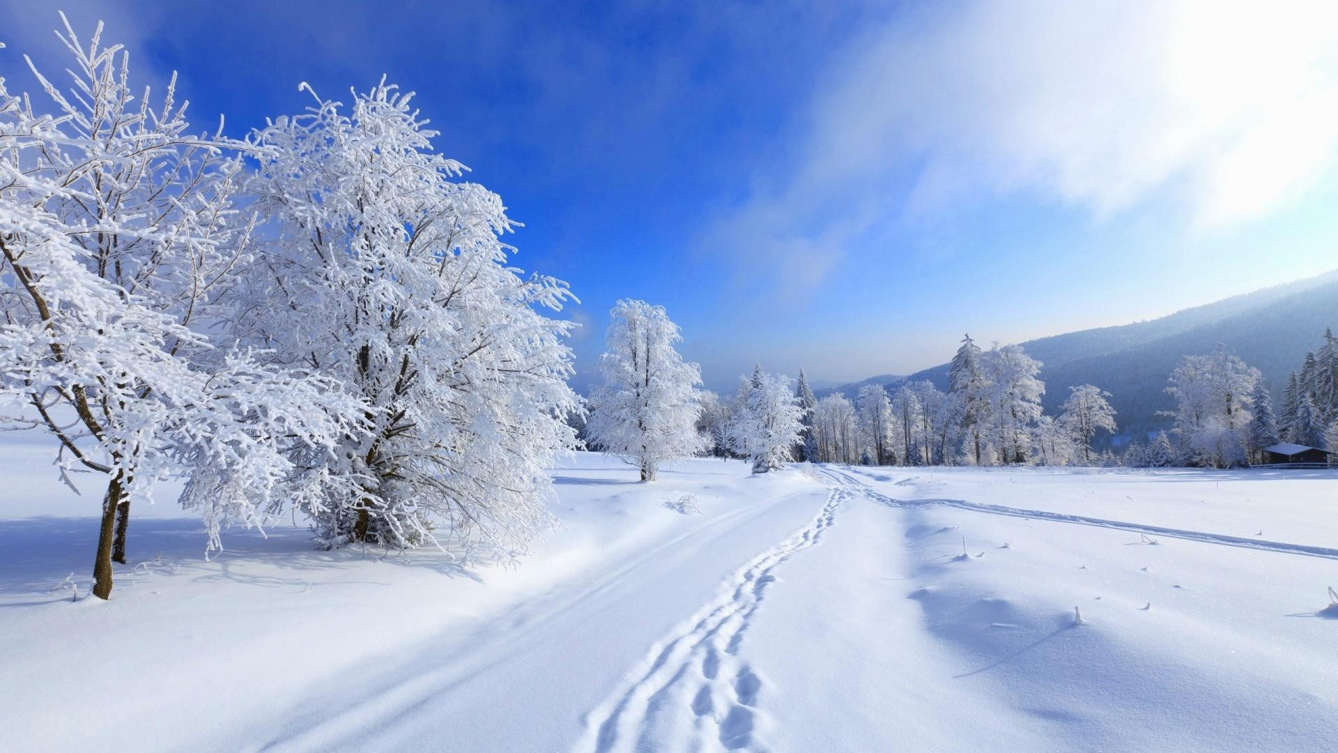 Winter Desktop Wallpaper ·① Download Free Cool High
