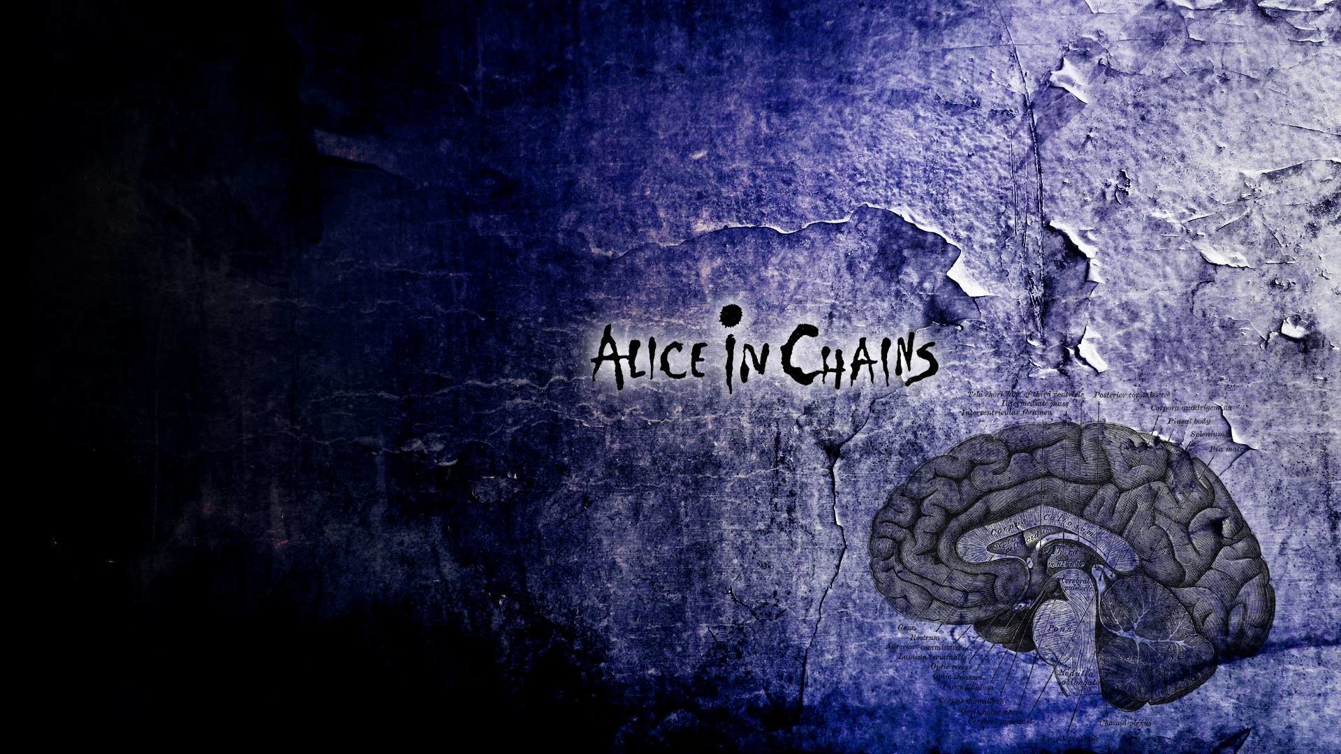 Alice In Chains Wallpapers Wallpapertag