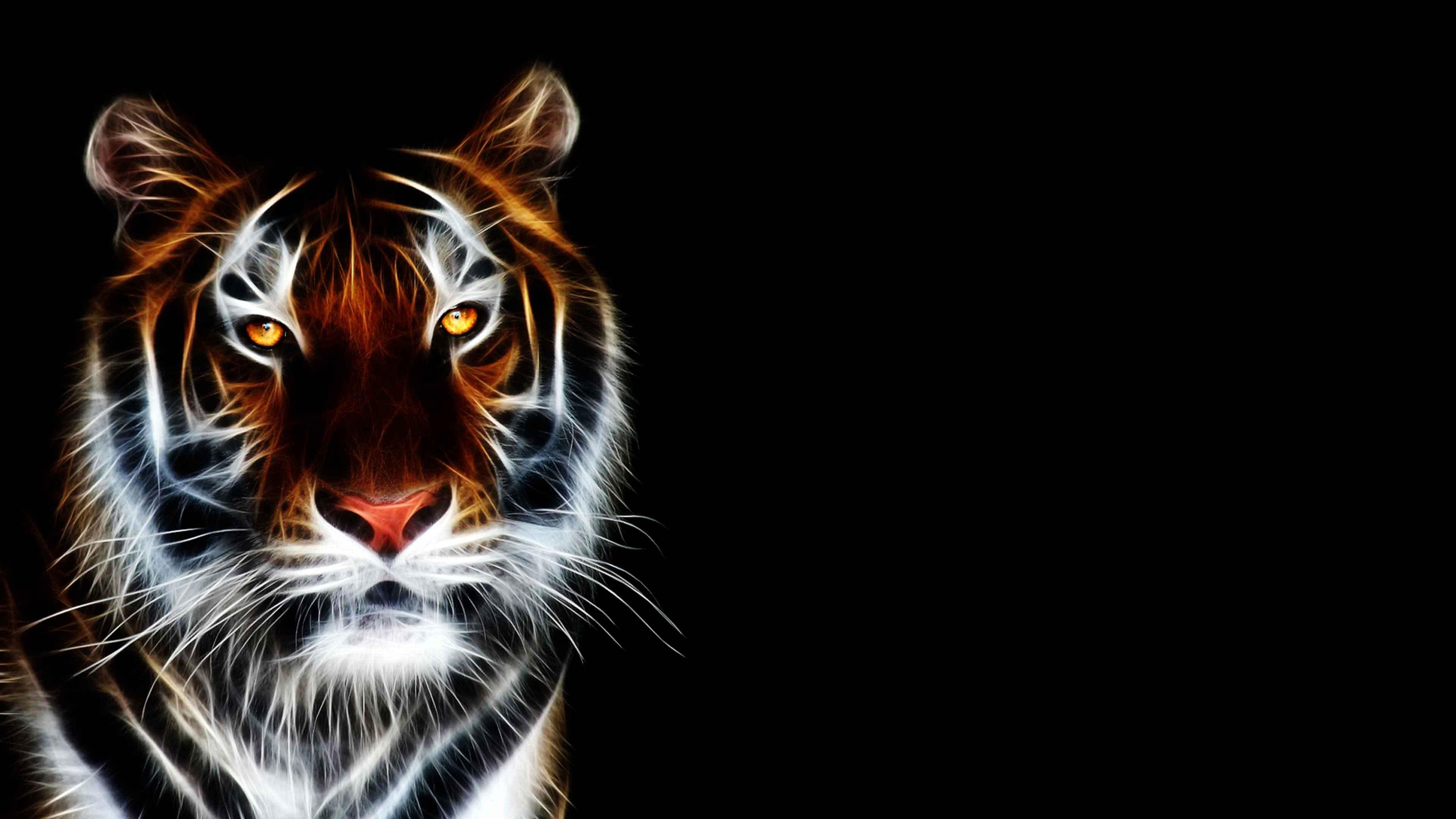New Tiger Wallpaper 2880x1800