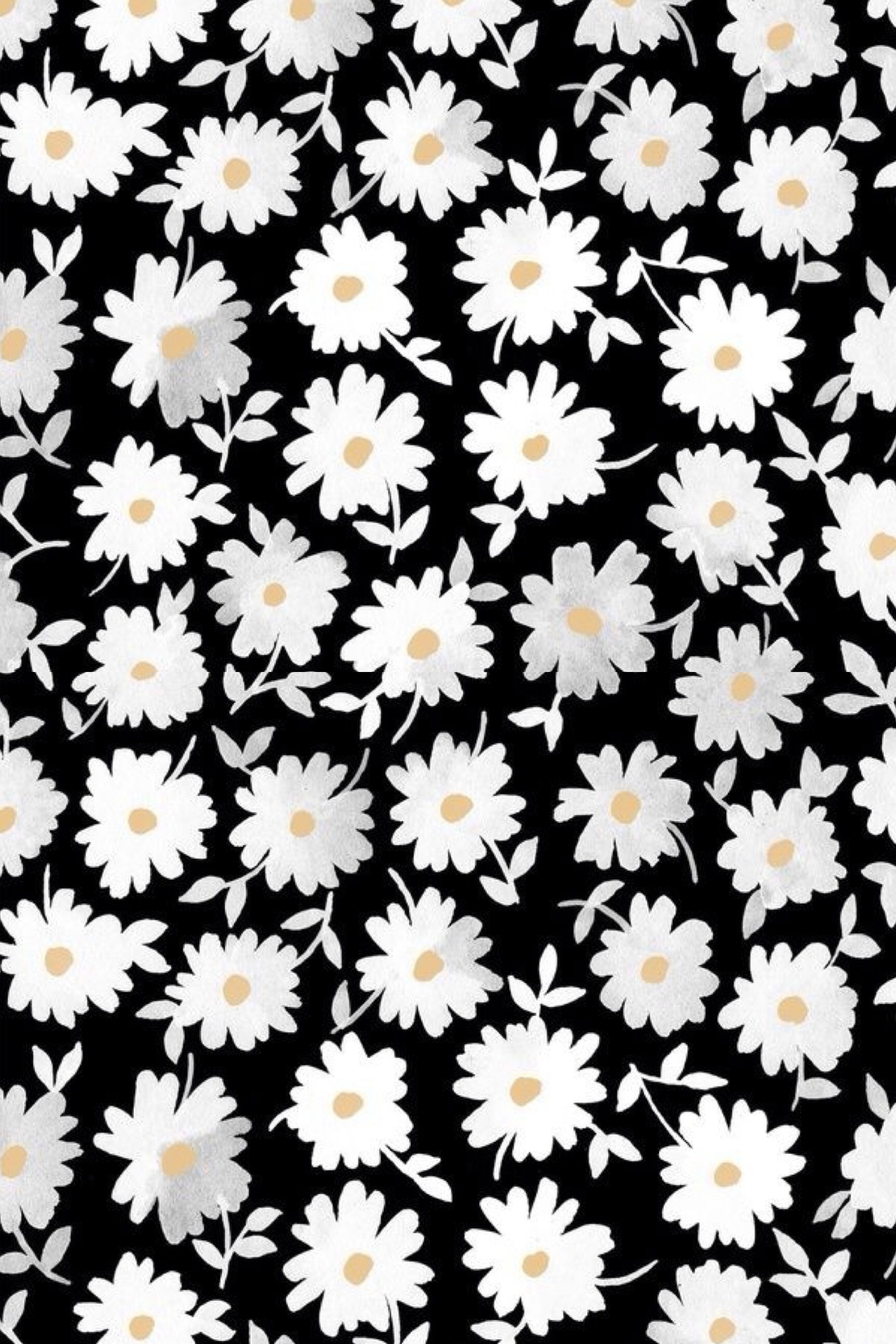 Daisy Wallpaper Background Wallpapertag