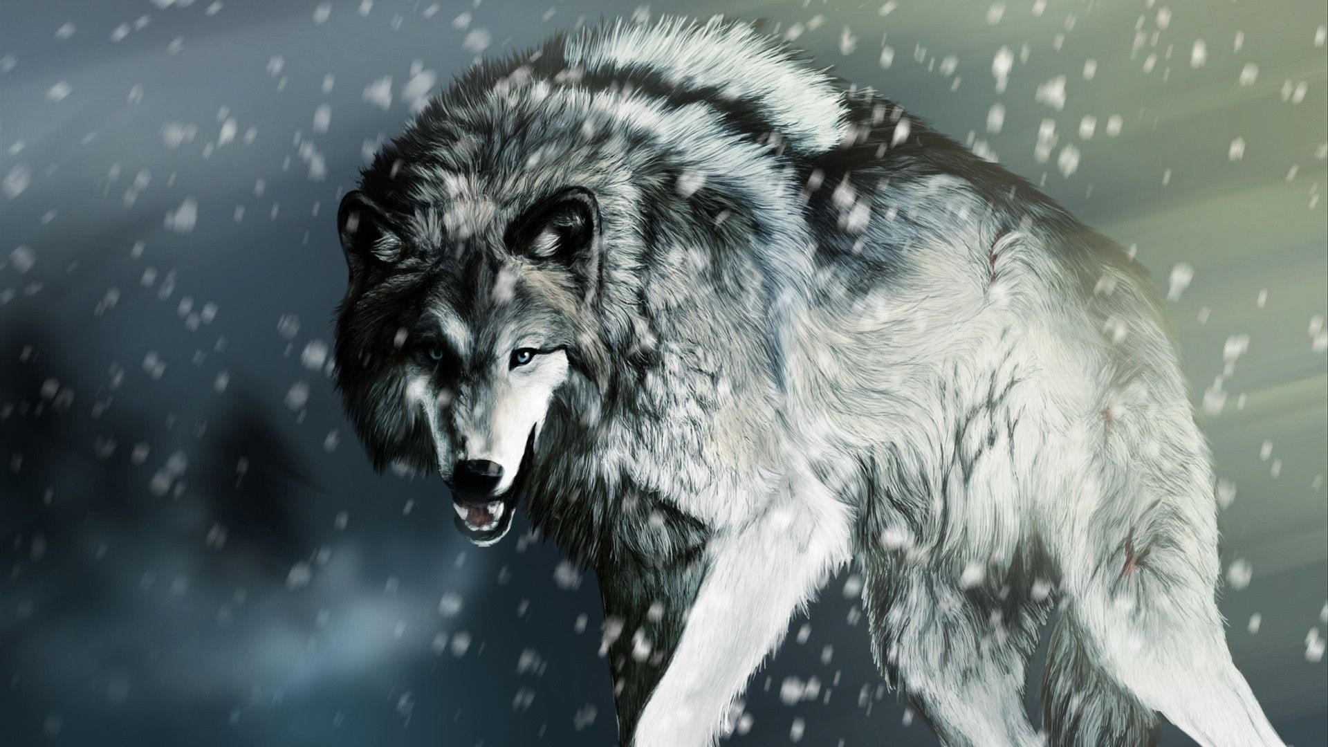 Wolf Wallpaper HD 1 Download Free Amazing Full Backgrounds For