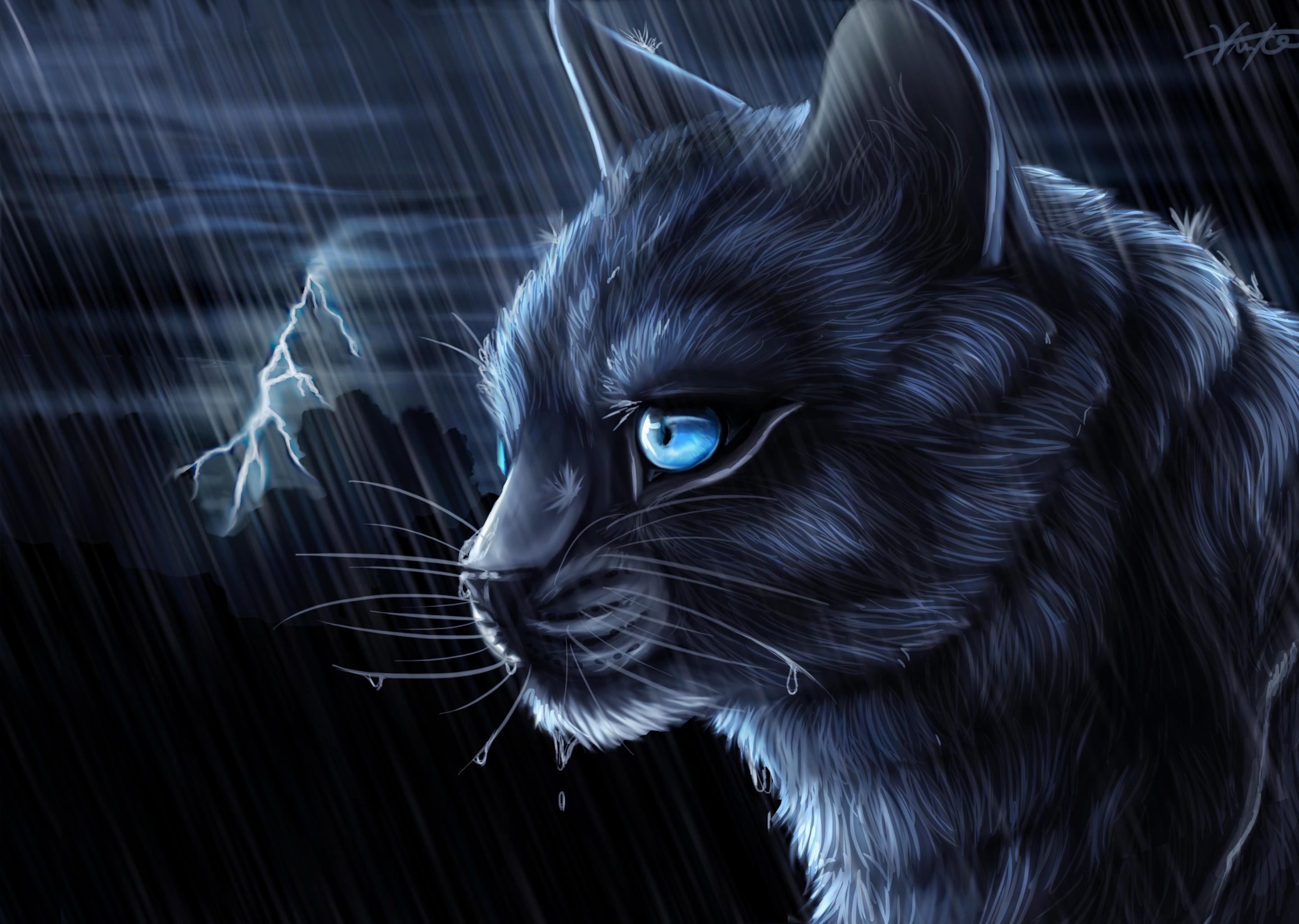 warriorcats