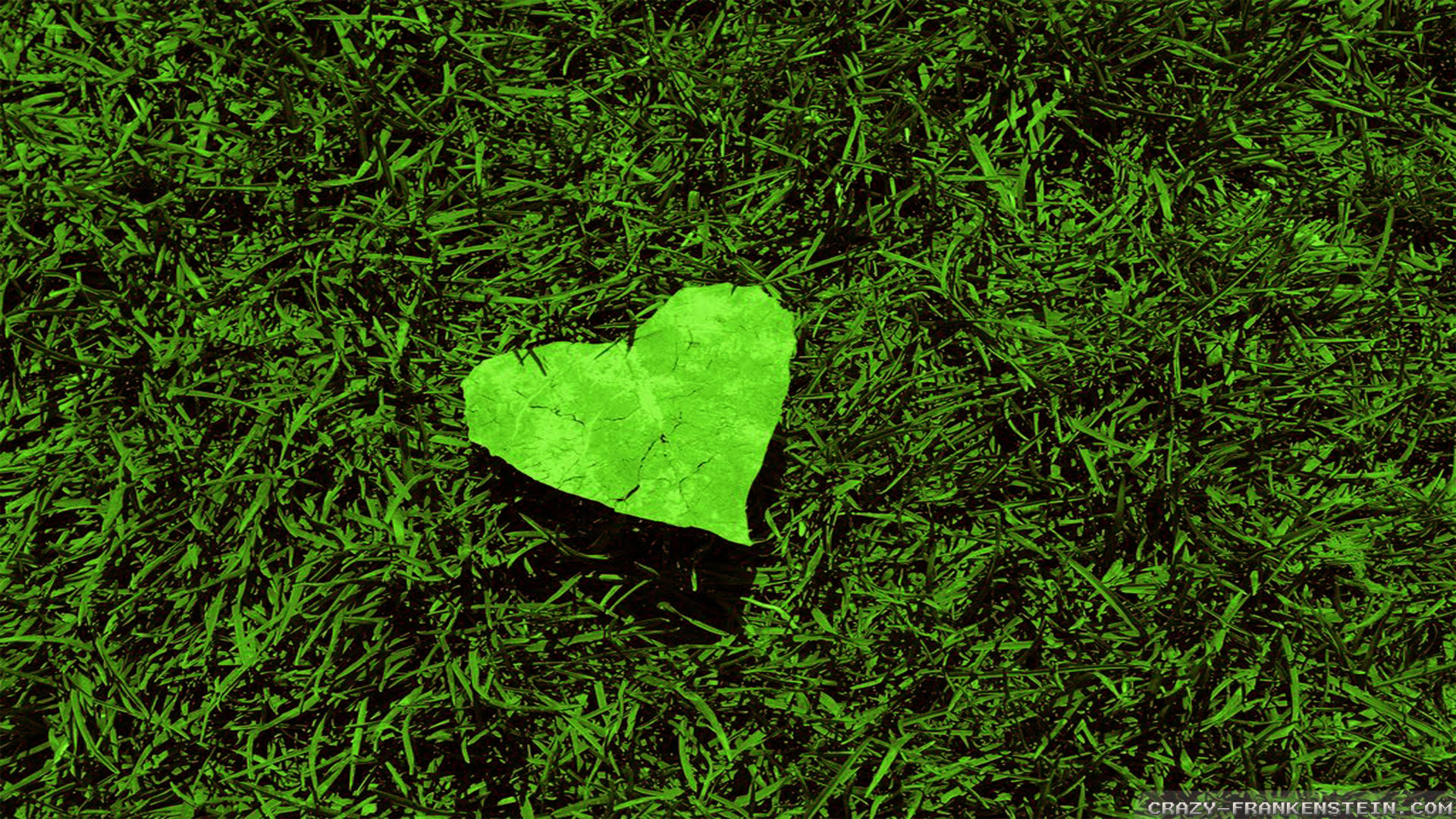 nature wallpapers heart leaf resolution frankenstein crazy widescreen res wallpapertag