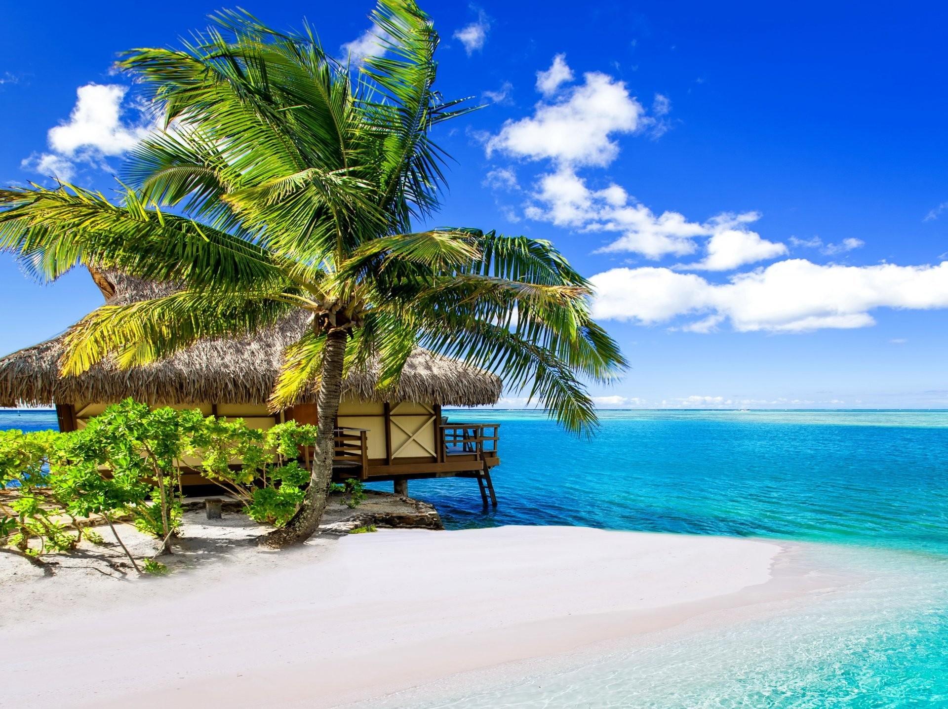 Hd Tropical Island Beach Paradise Wallpapers And Backgrounds: Paradise Beach Wallpaper ·① WallpaperTag