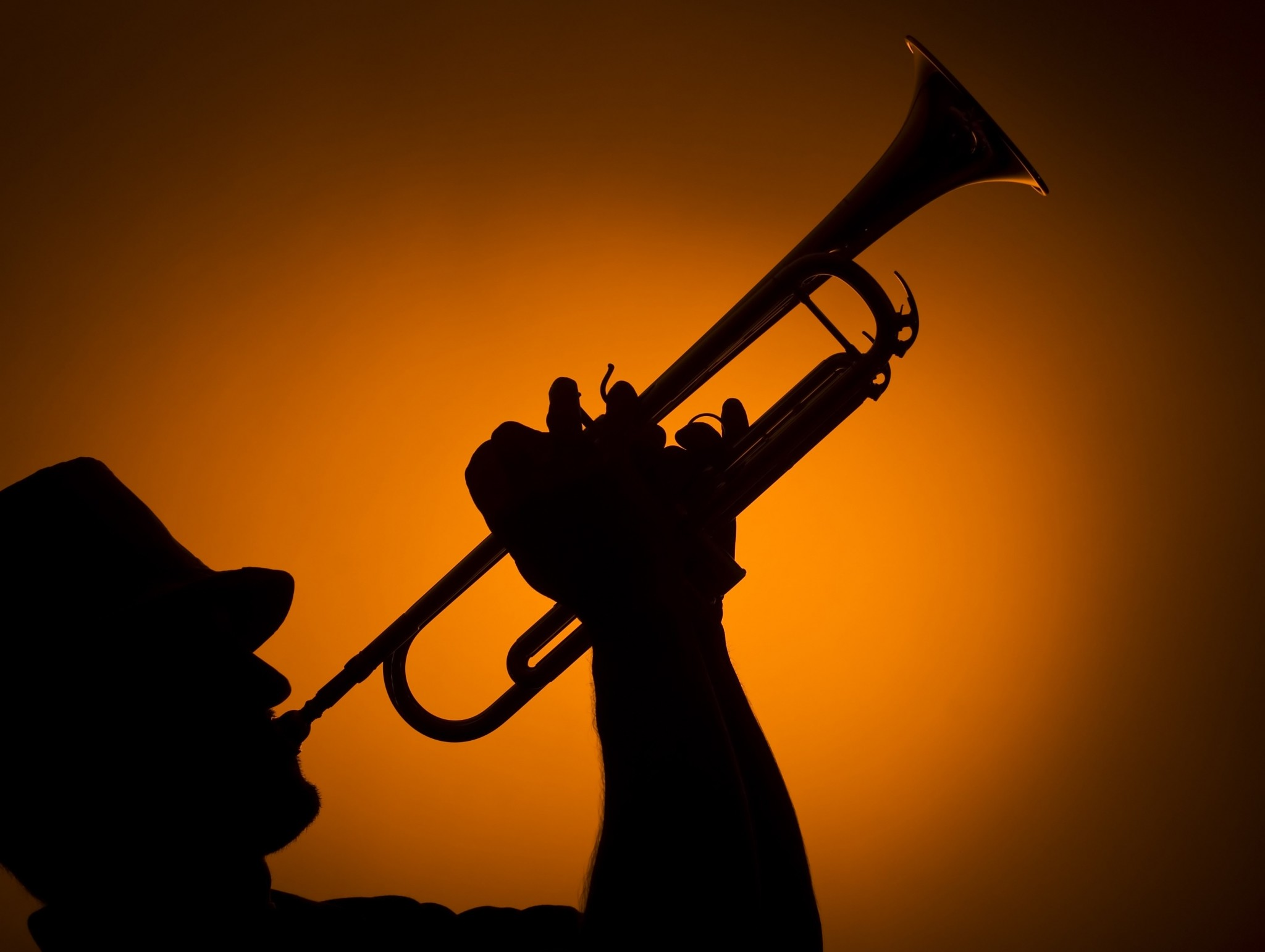 trumpet wallpapers 183��