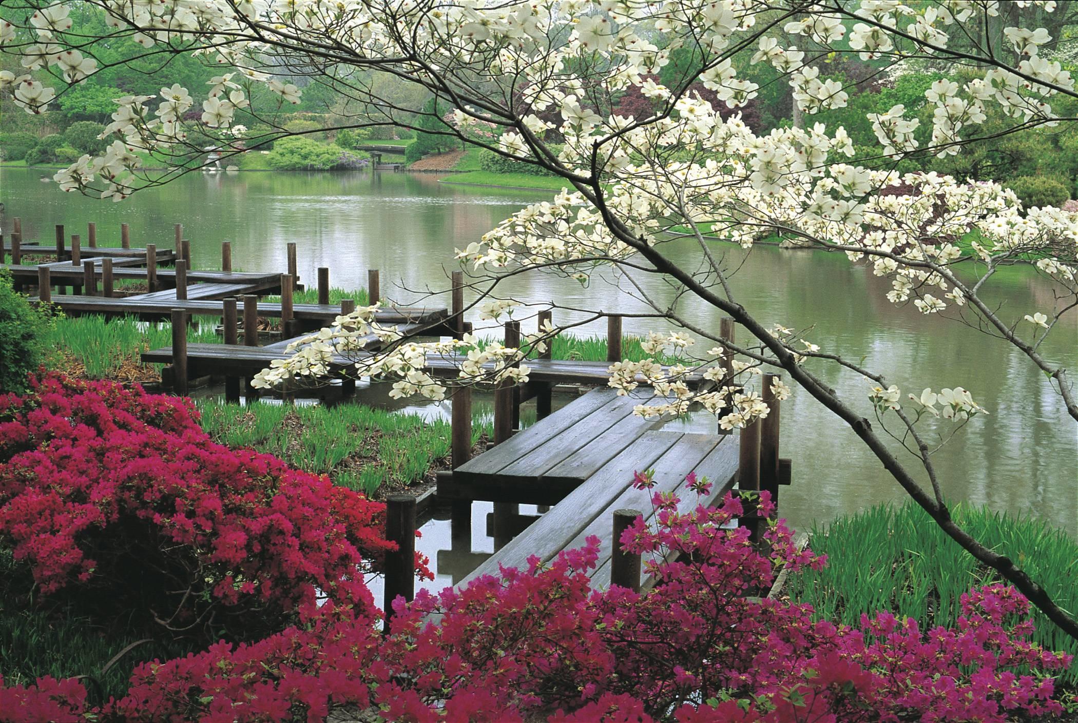 japanese garden desktop wallpaper 183��