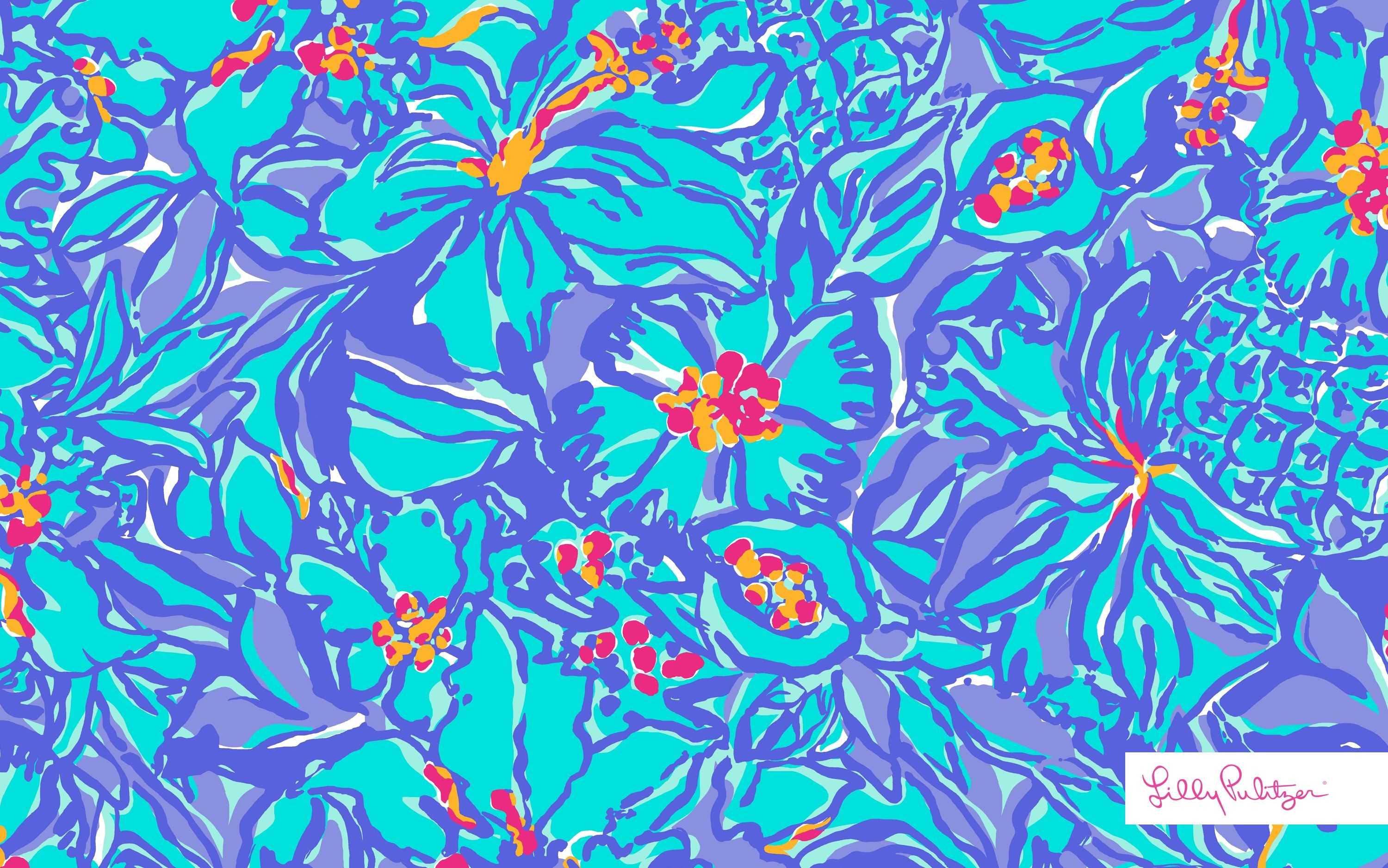 3000x1876 print worth celebrating download full size lilly pulitzer backgrounds 3000x1876