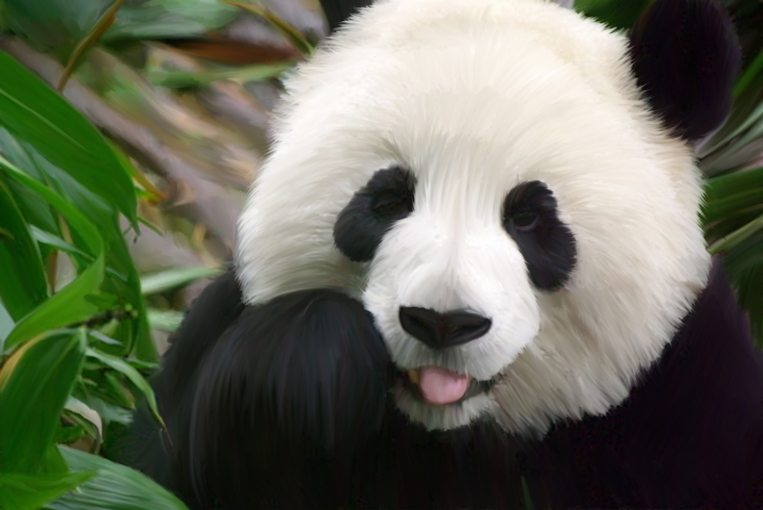 Panda Background 1 Download Free Stunning Full HD Wallpapers For
