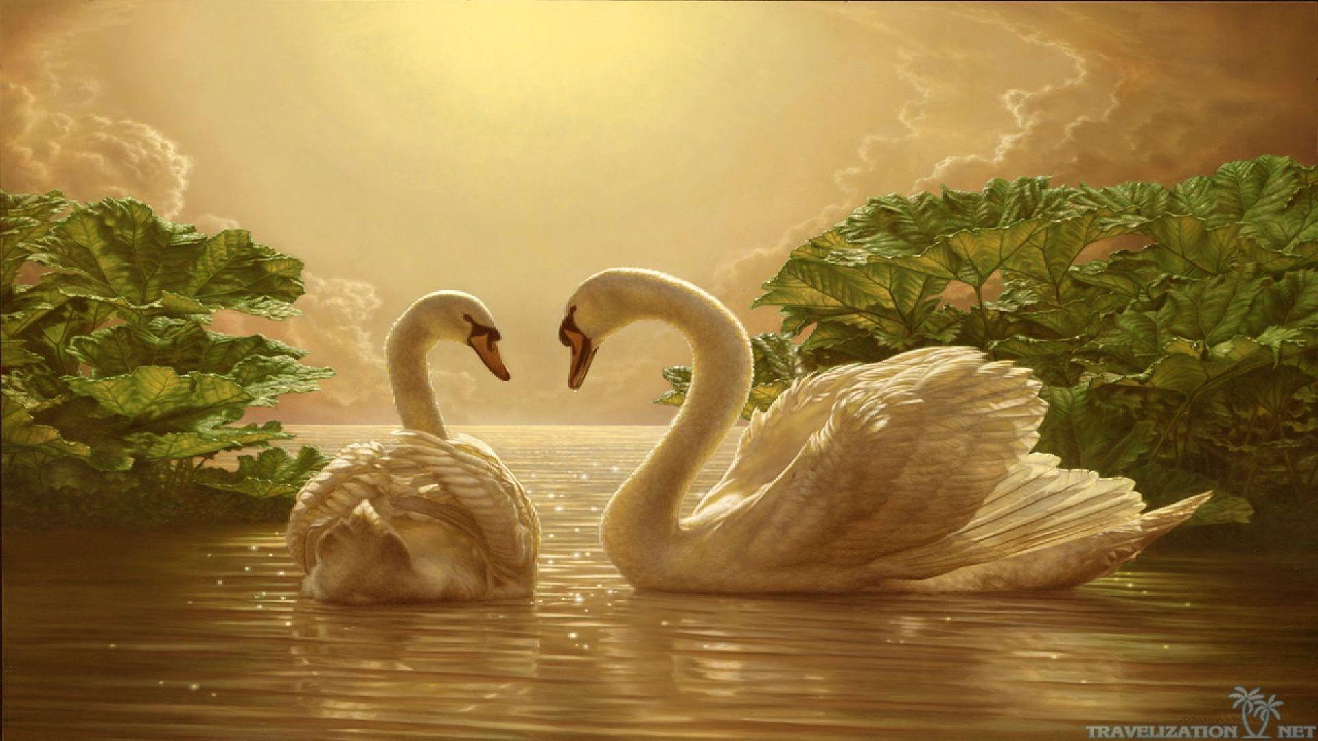 Love Nature Wallpaper ·① WallpaperTag