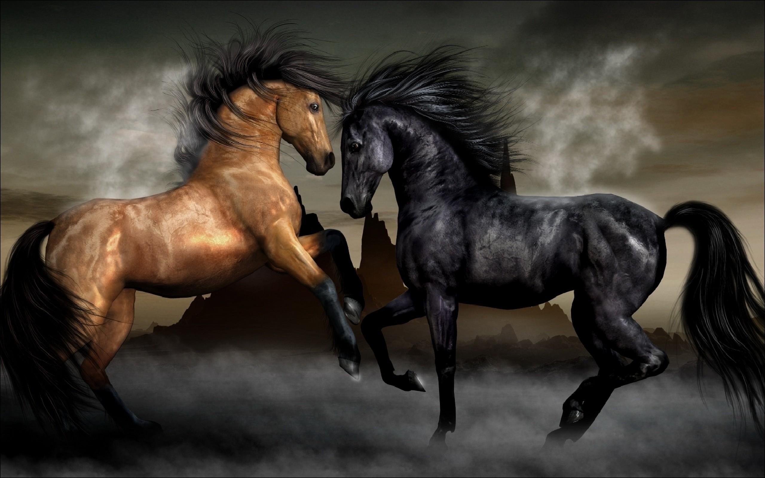 Horses Wallpaper Wallpapertag