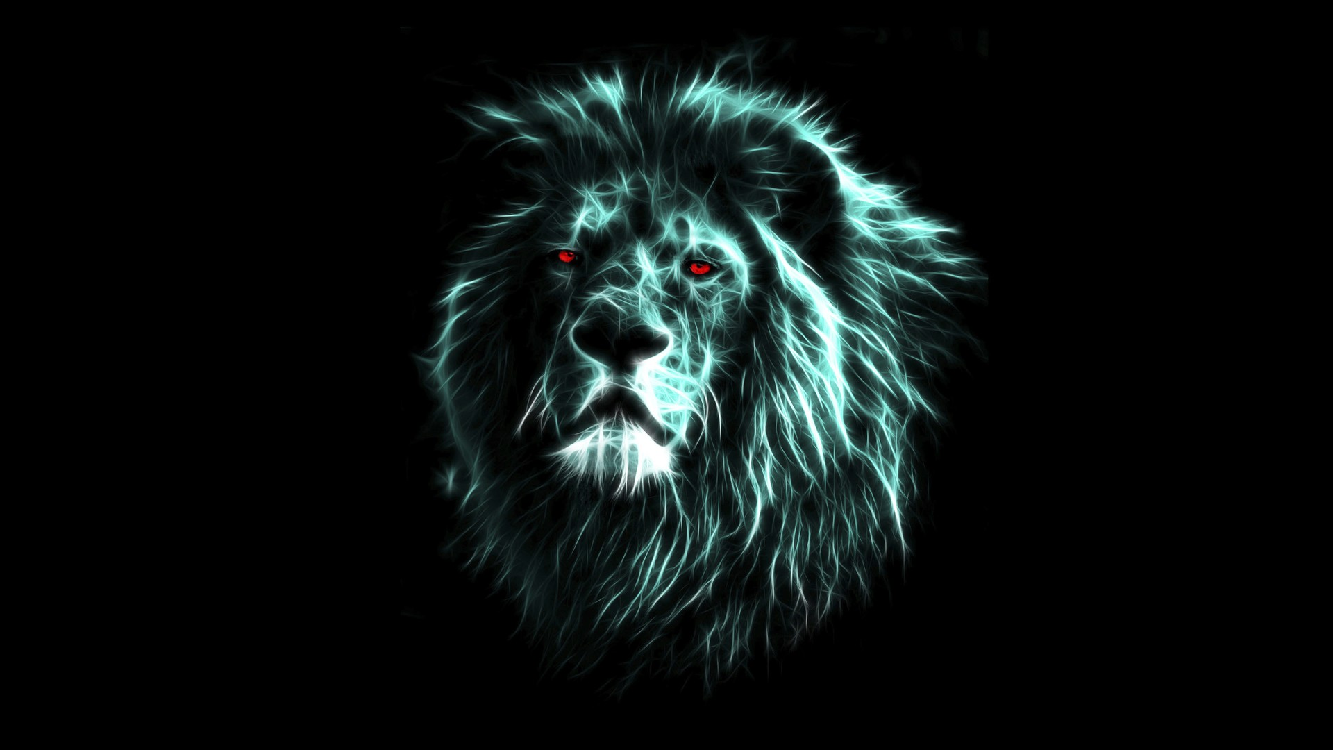 Lion Wallpaper HD 1 Download Free Amazing Wallpapers For