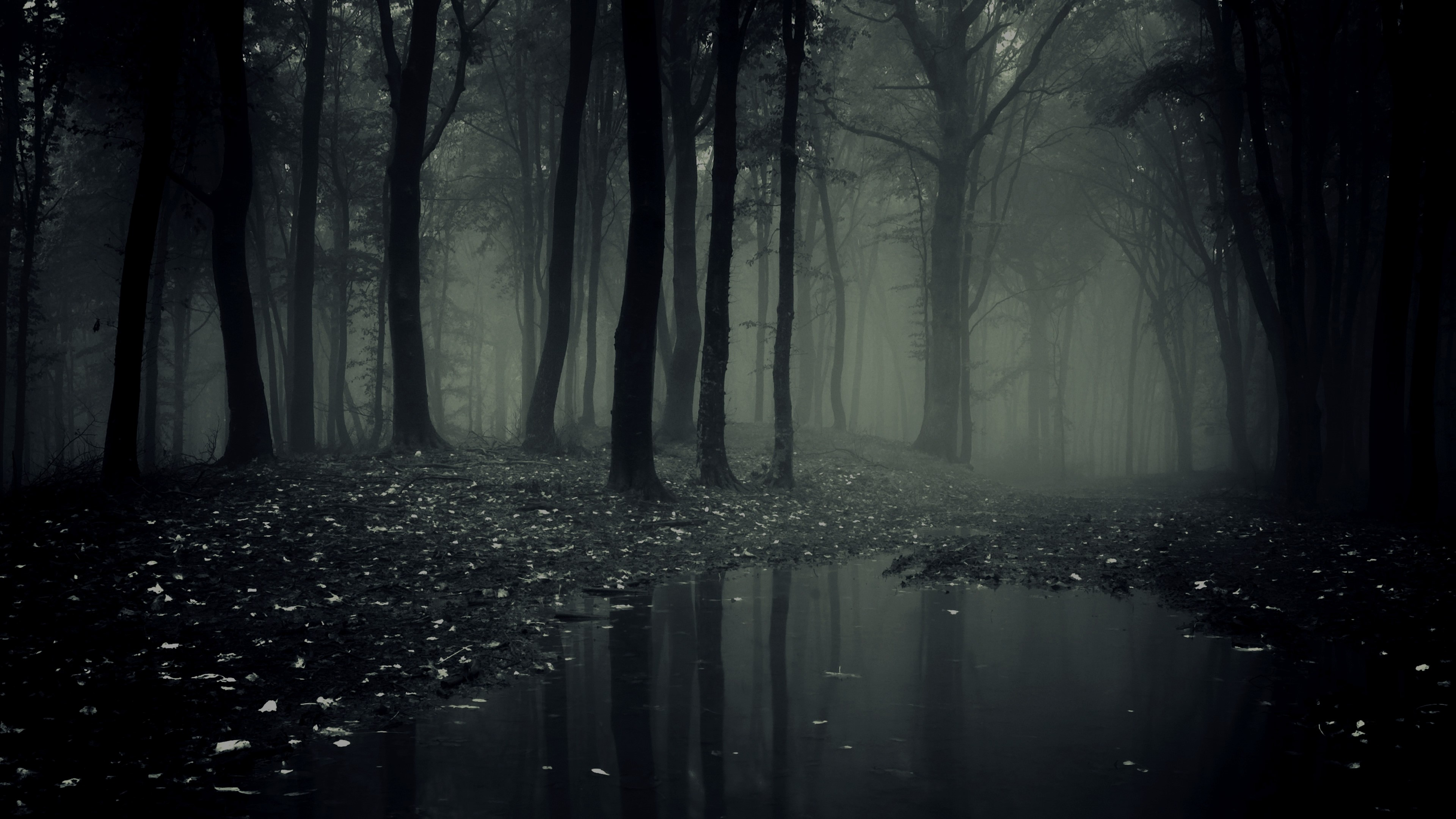 Scary Background ① Download Free Amazing Backgrounds For Desktop