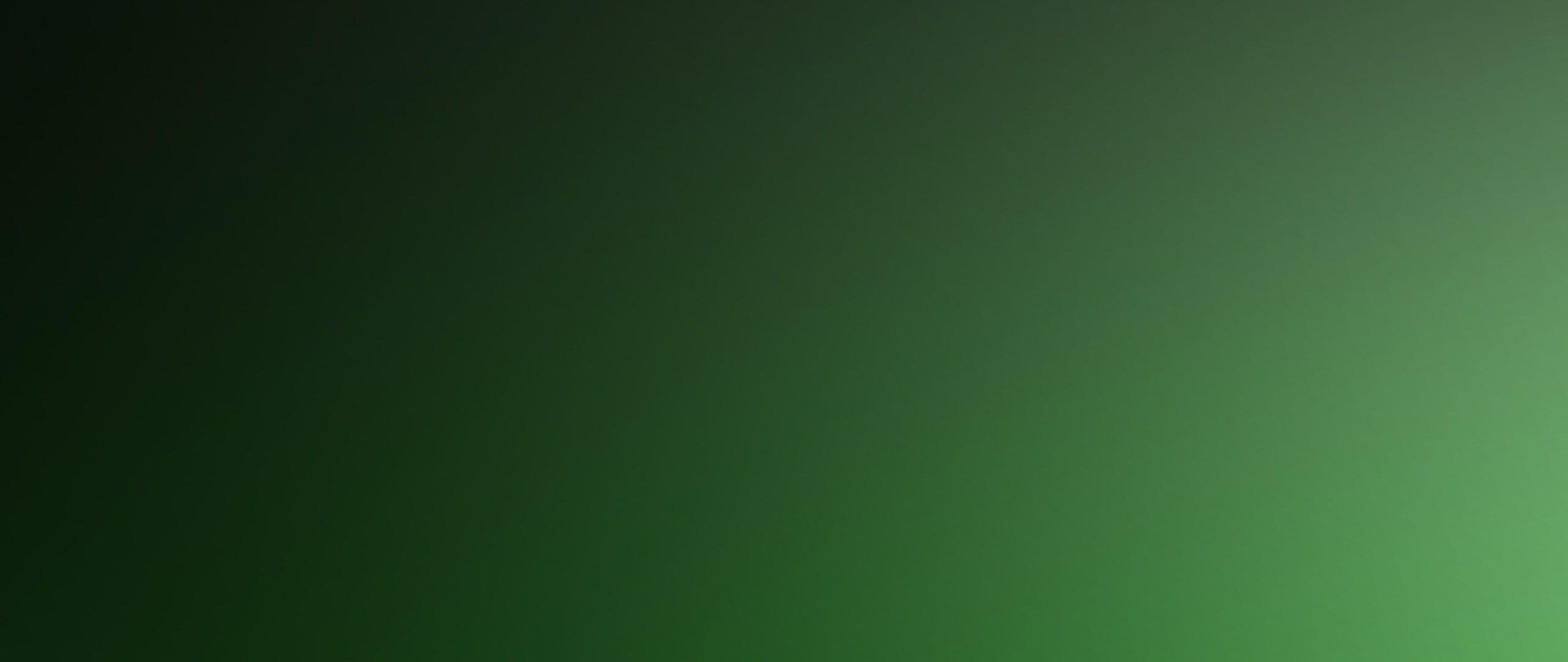 Solid green desktop wallpaper