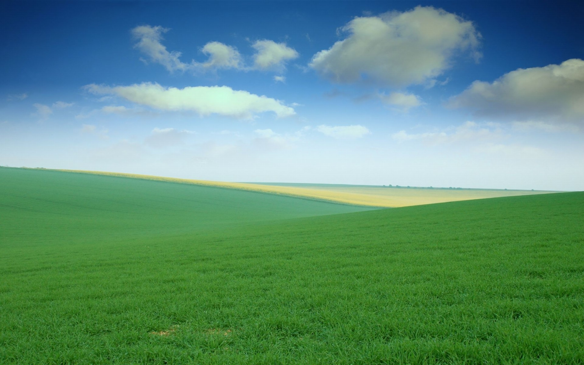Field Background ·① Download Free High Resolution