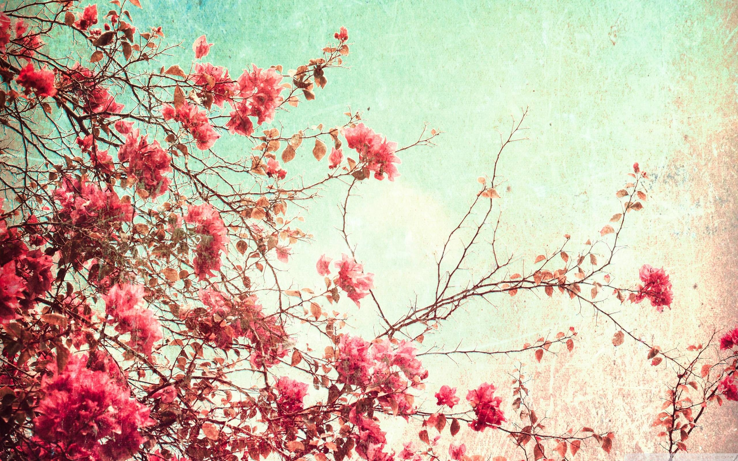 Vintage Flowers Wallpaper 1