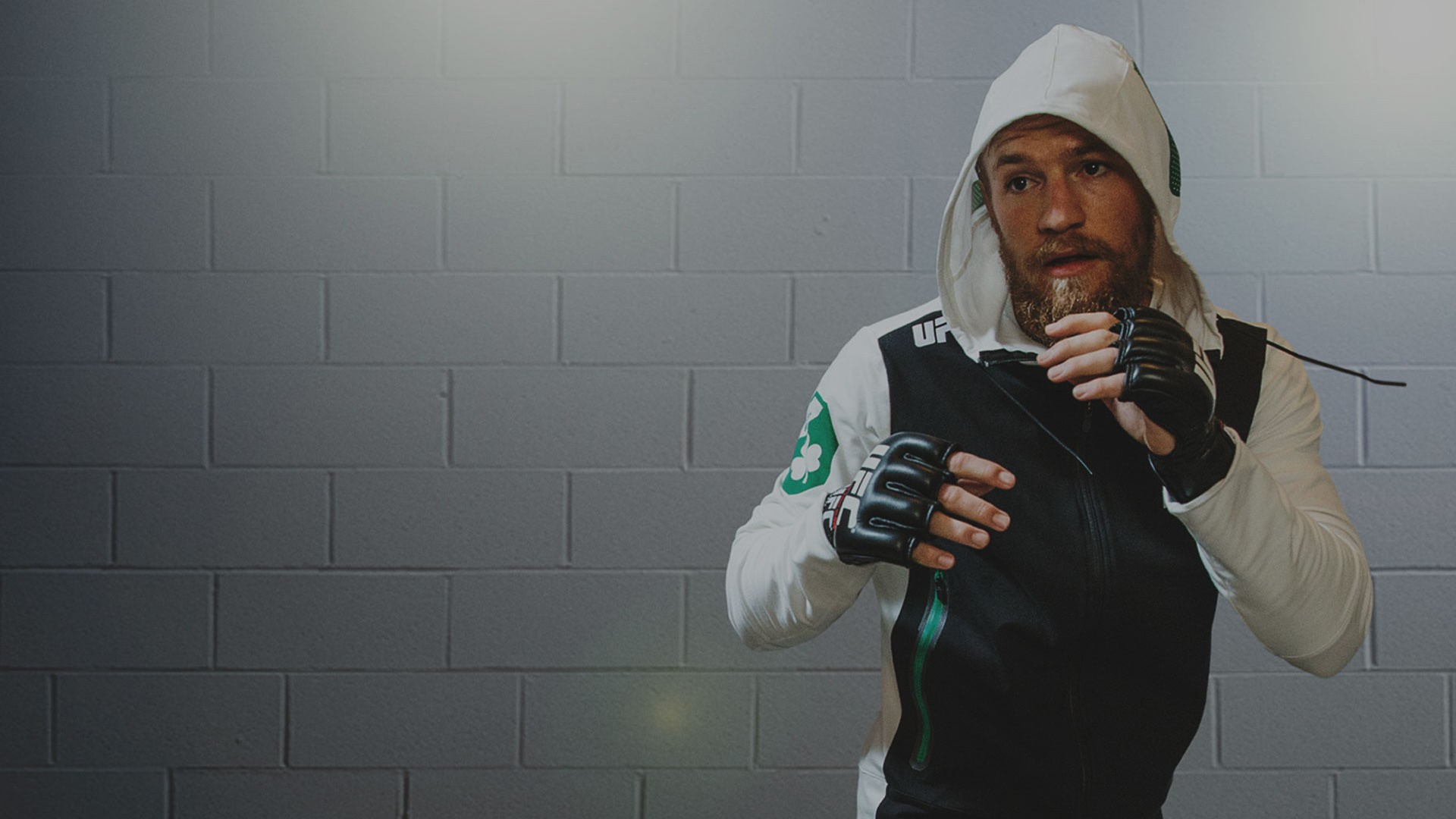 Conor McGregor wallpaper ·① Download free full HD wallpapers of Conor McGregor (MMA fighter) for ...