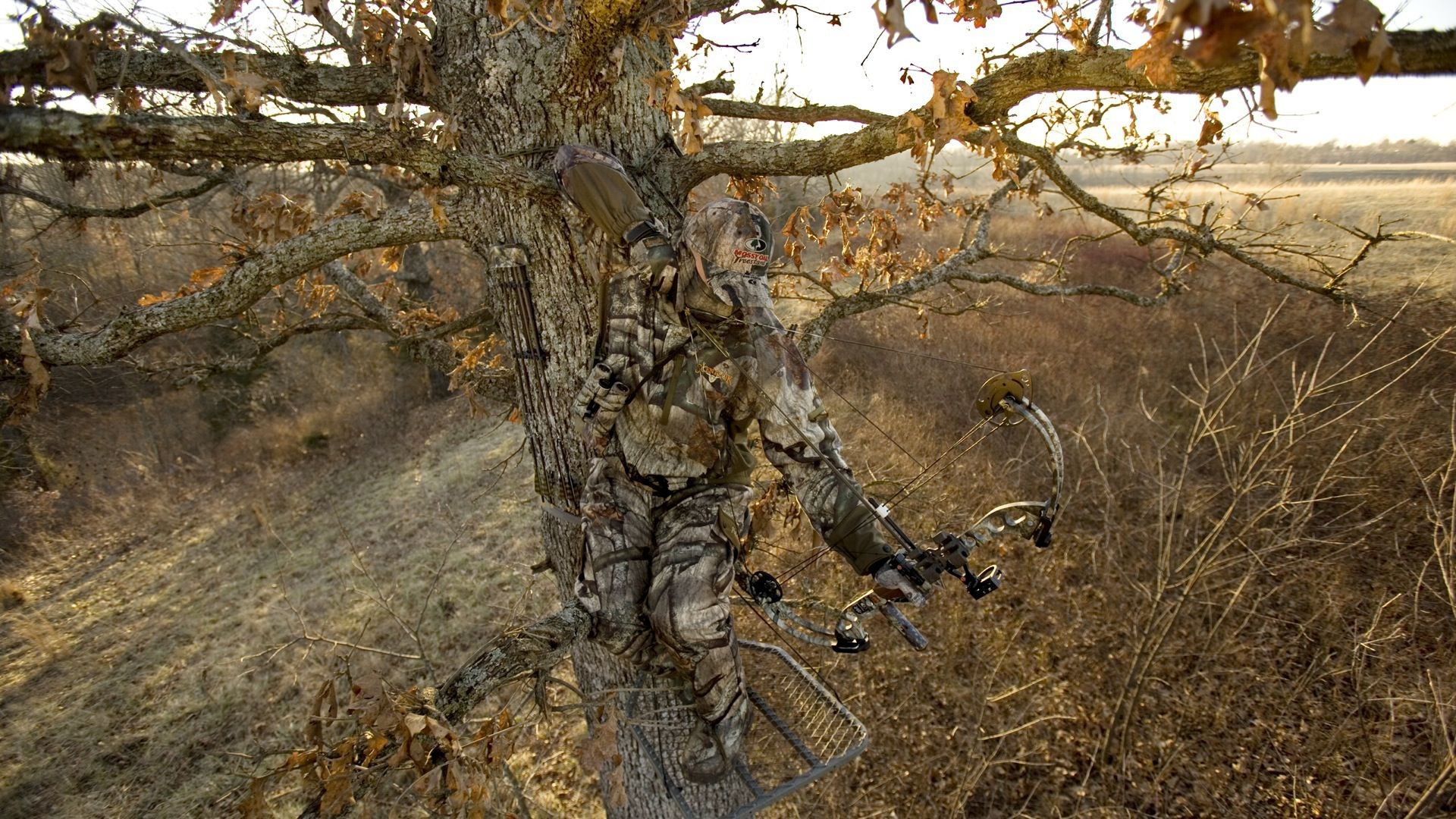 Realtree Wallpaper ① Download Free Stunning Hd Backgrounds For