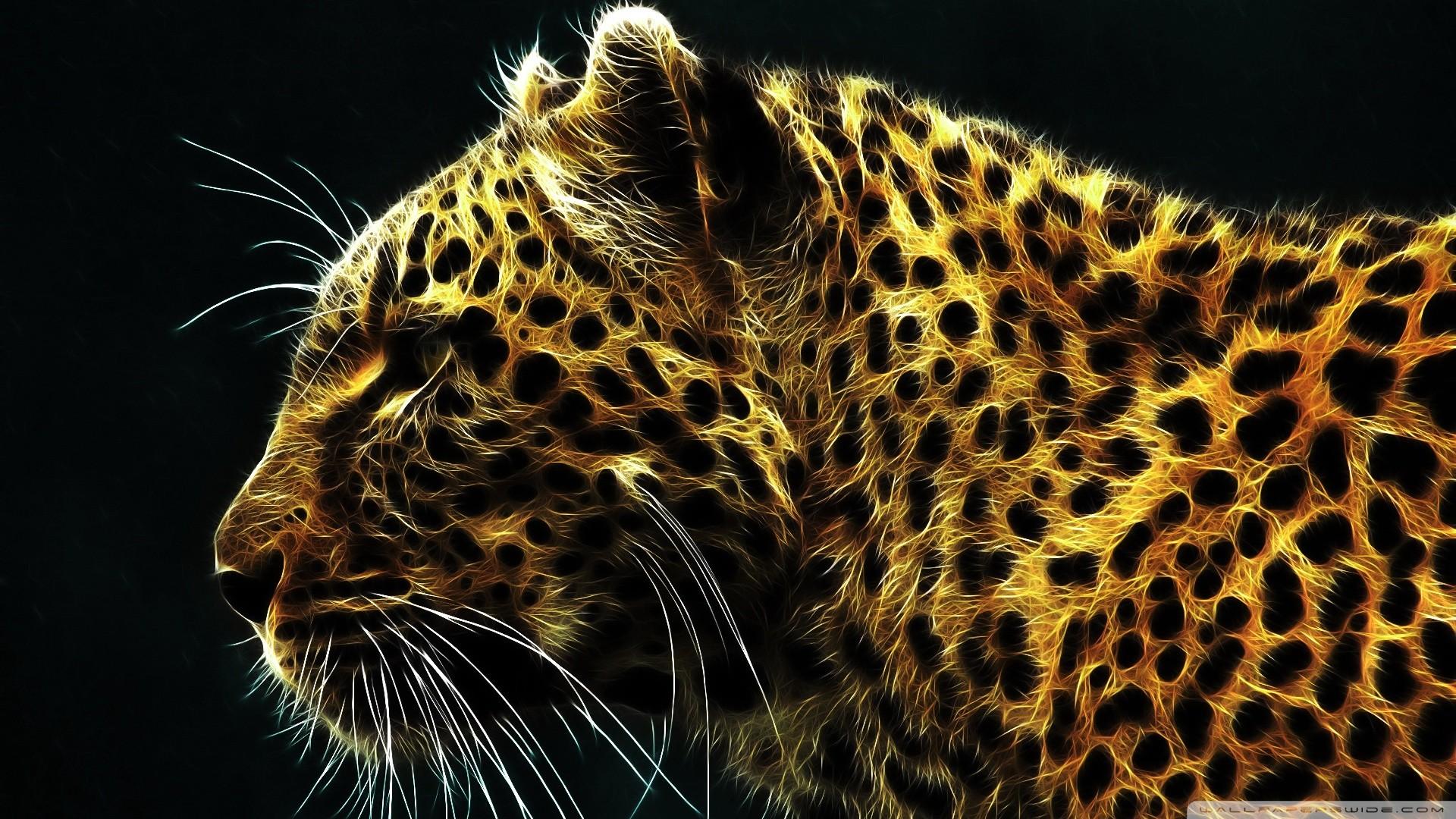 Cheetah Wallpaper HD ·â'