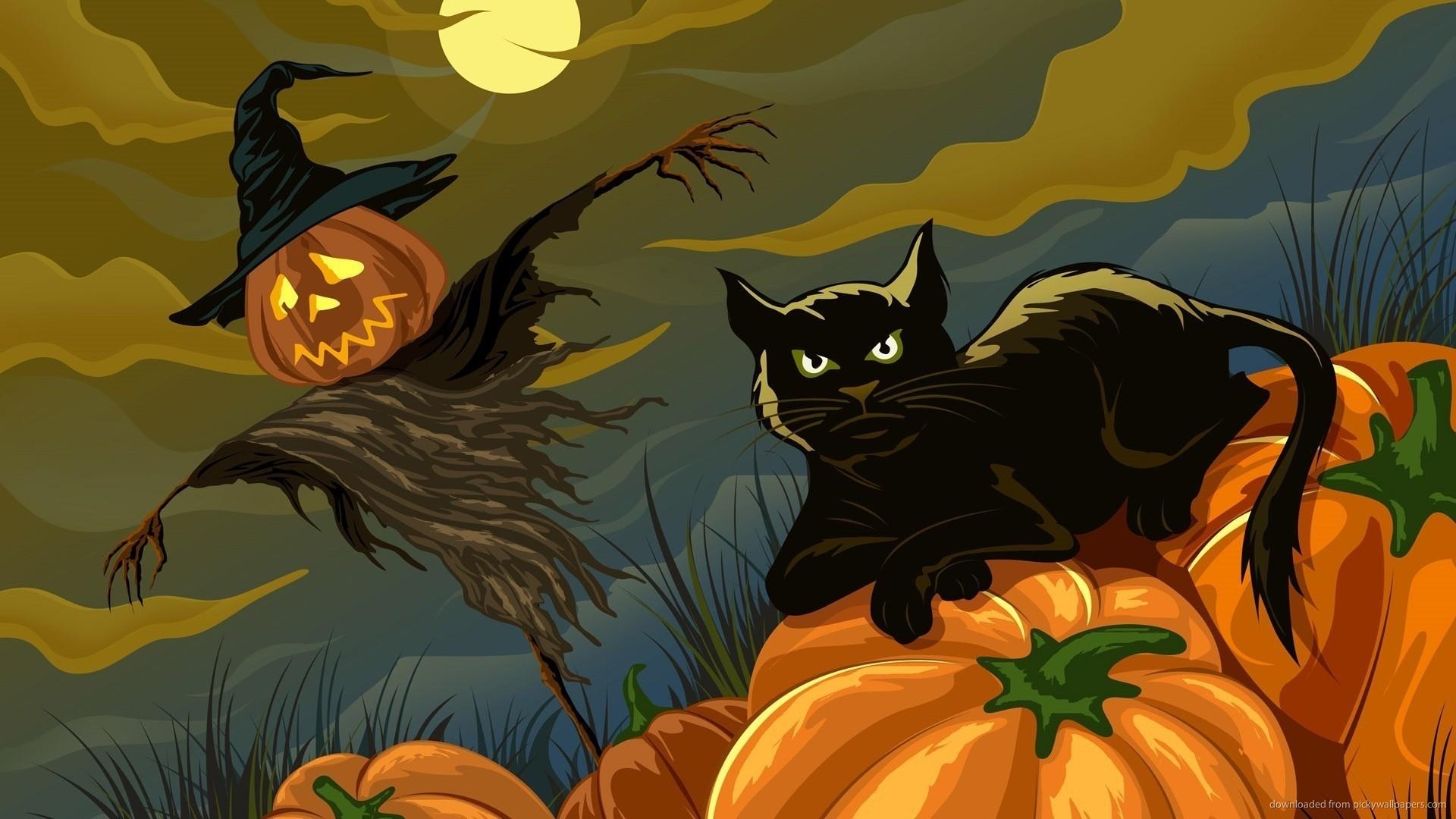Halloween Cat Wallpaper ·①