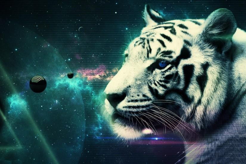 White Tiger Wallpaper Themes HD